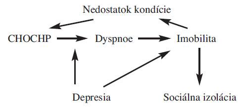 Schéma 1. Cyklus fyzických, sociálnych a psychosociálnych dôsledkov CHOCHP (GOLD).