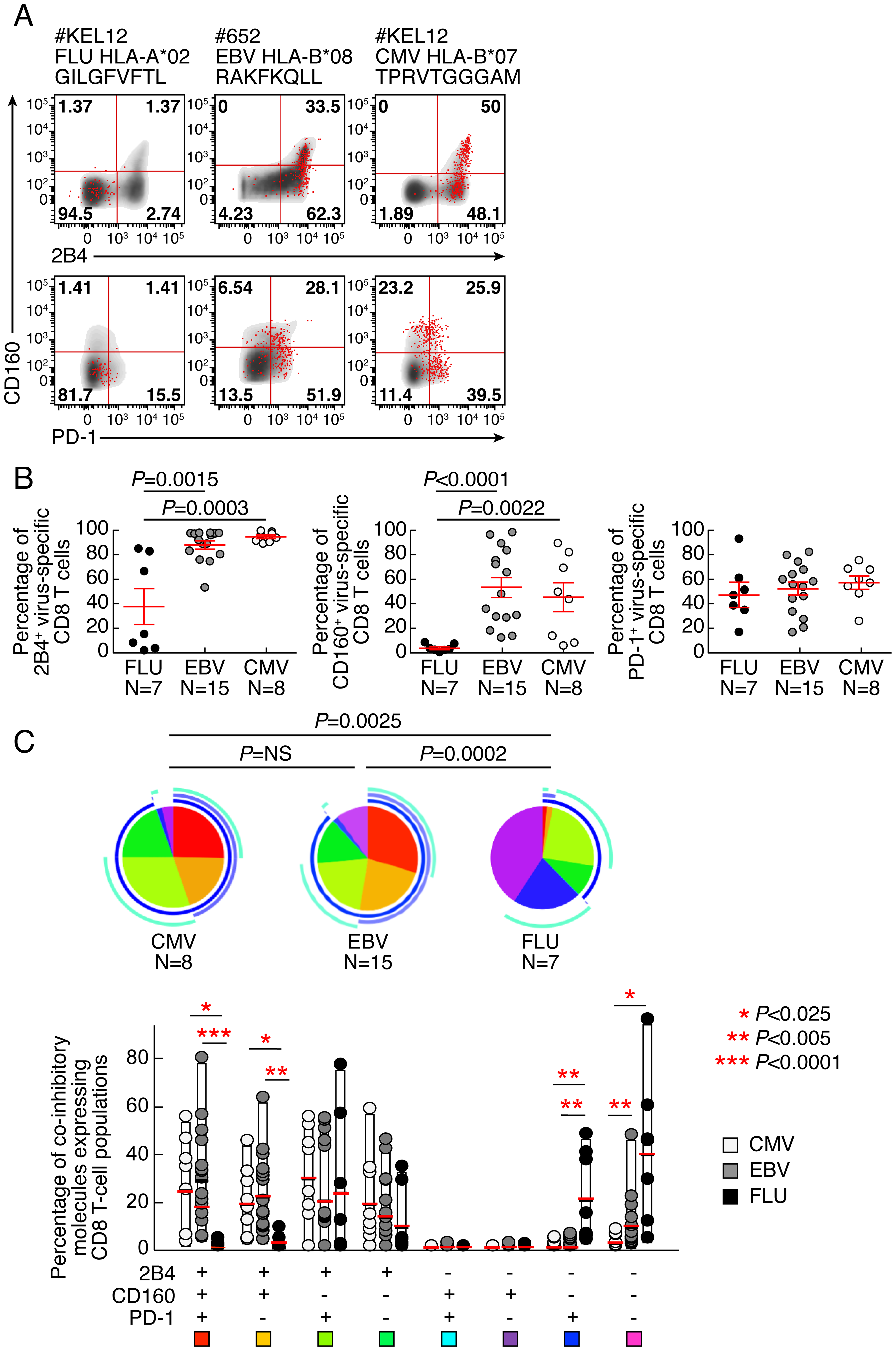EBV and CMV-specific CD8 T cells express significantly more CD160 than Flu-specific CD8 T cells.
