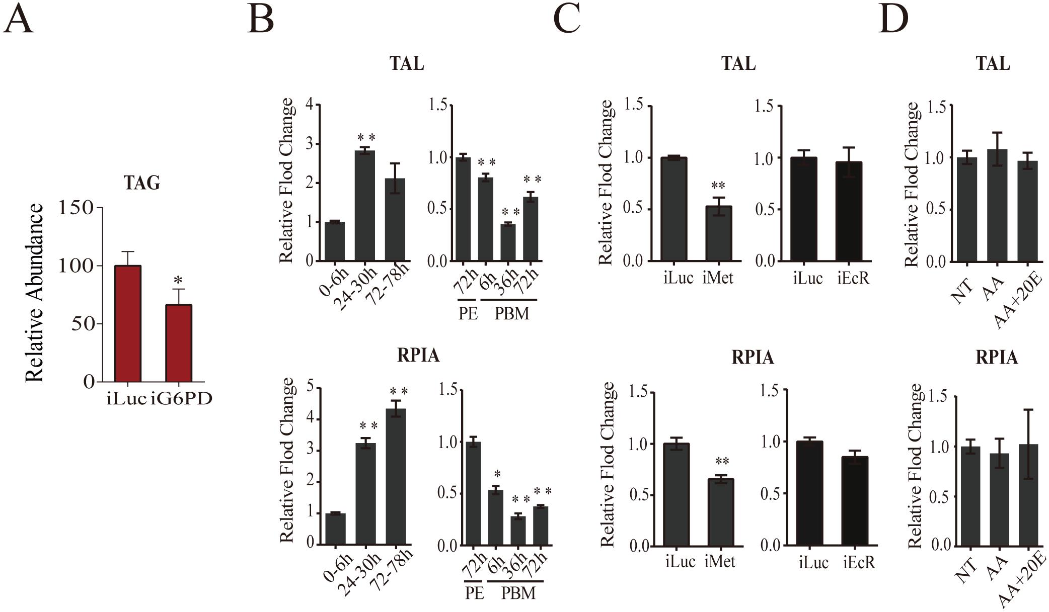Analysis of pentose phosphate pathway genes.