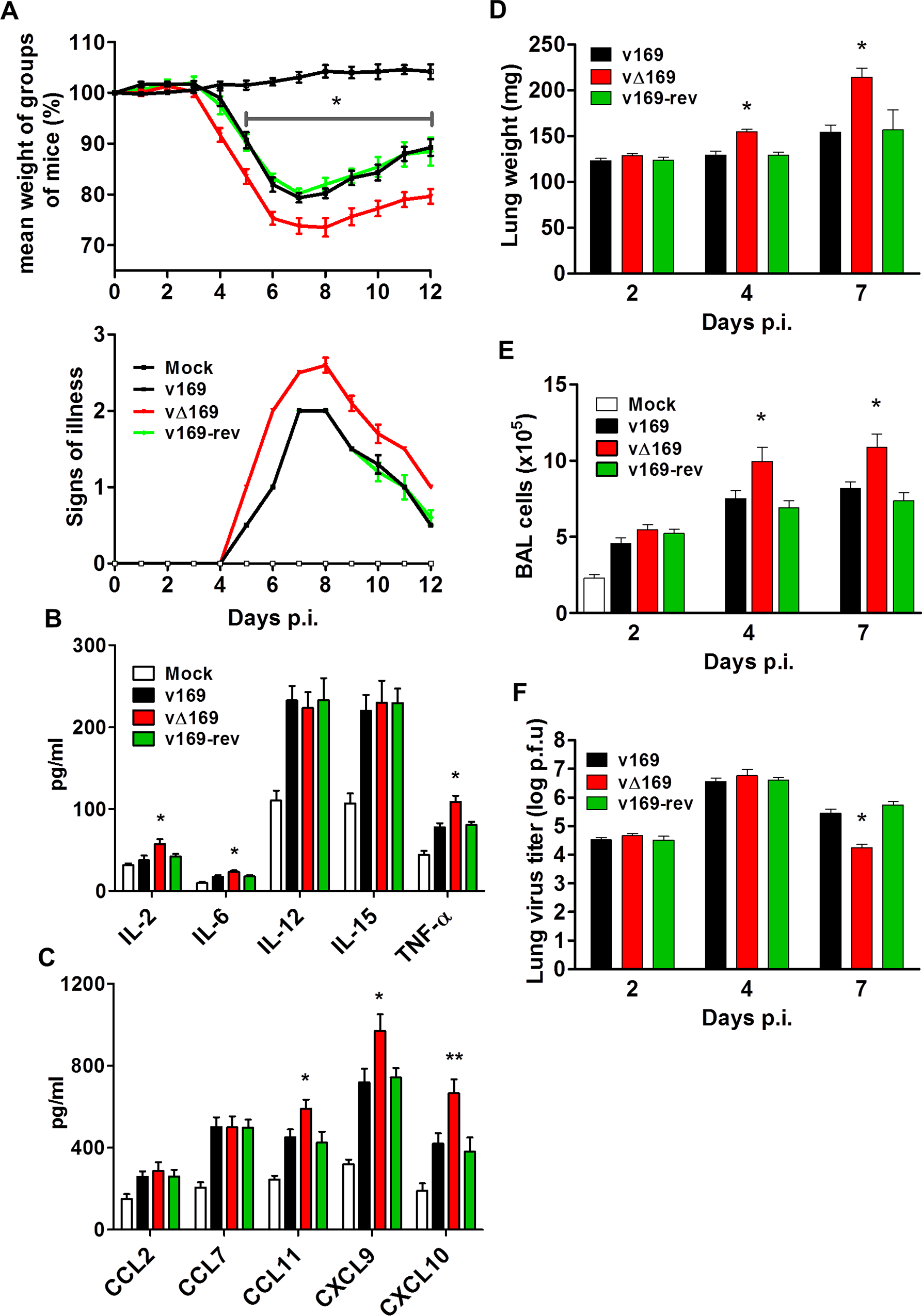 Protein 169 affects VACV virulence in the intranasal model of infection.
