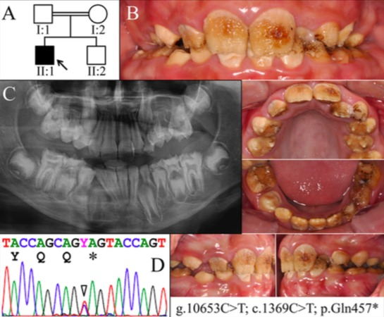 Figure 1. 