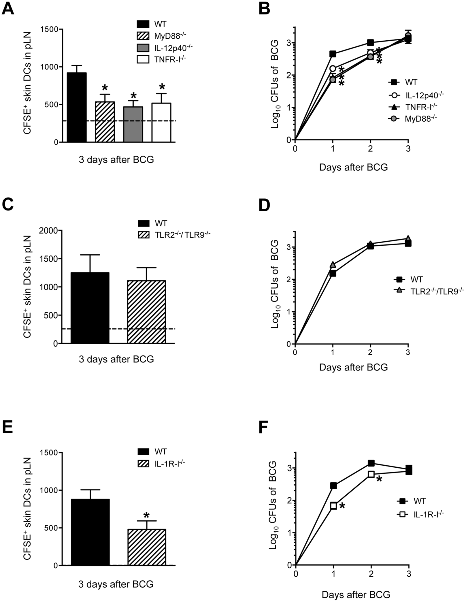 MyD88, IL-12p40, TNFR-I and IL-1R-I regulate entry of skin DCs and BCG into DLN.