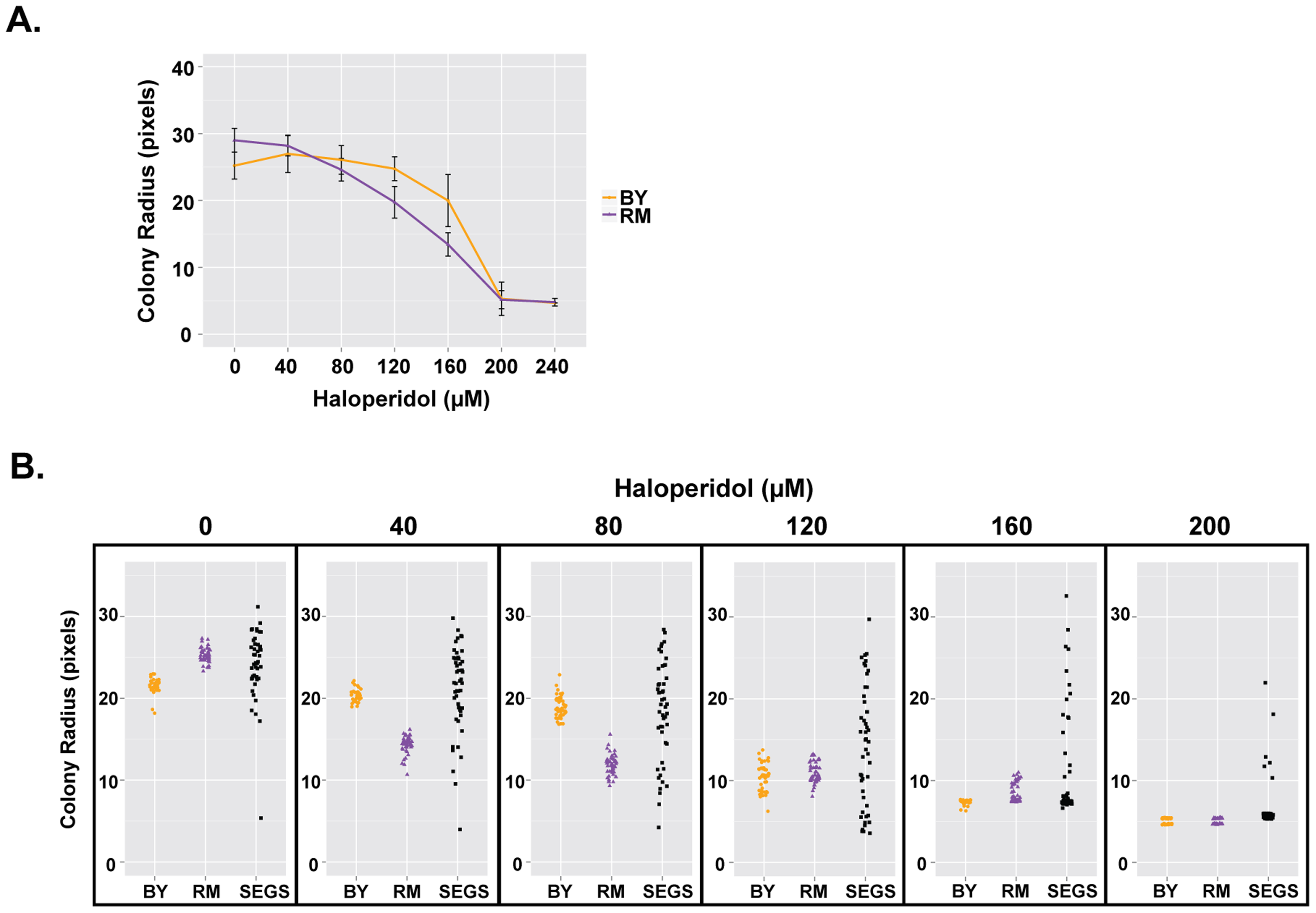 Haloperidol resistance differs between BY and RM, and shows transgressive segregation.