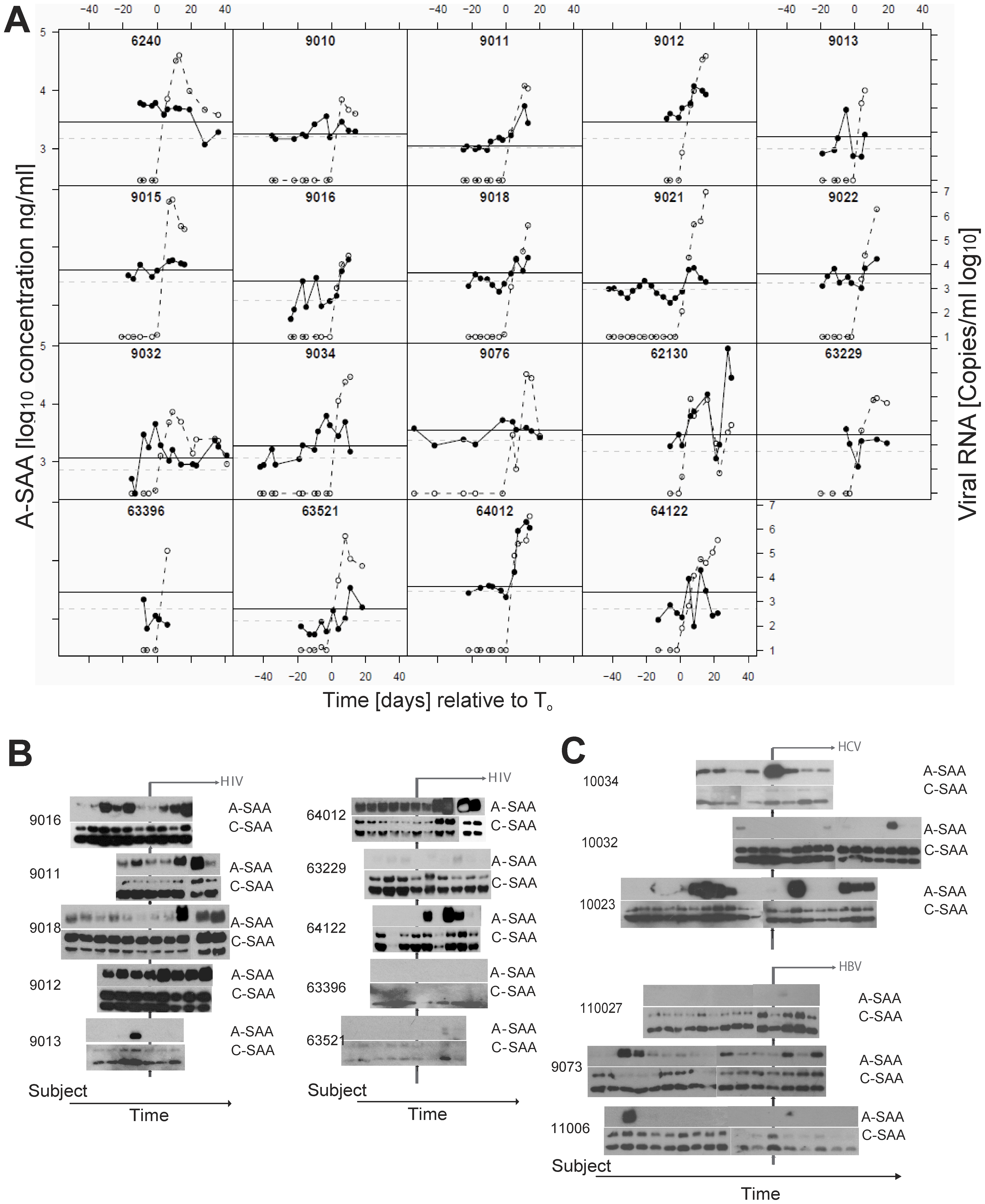 Kinetic analysis of A-SAA levels prior to and during HIV-1 viremia.
