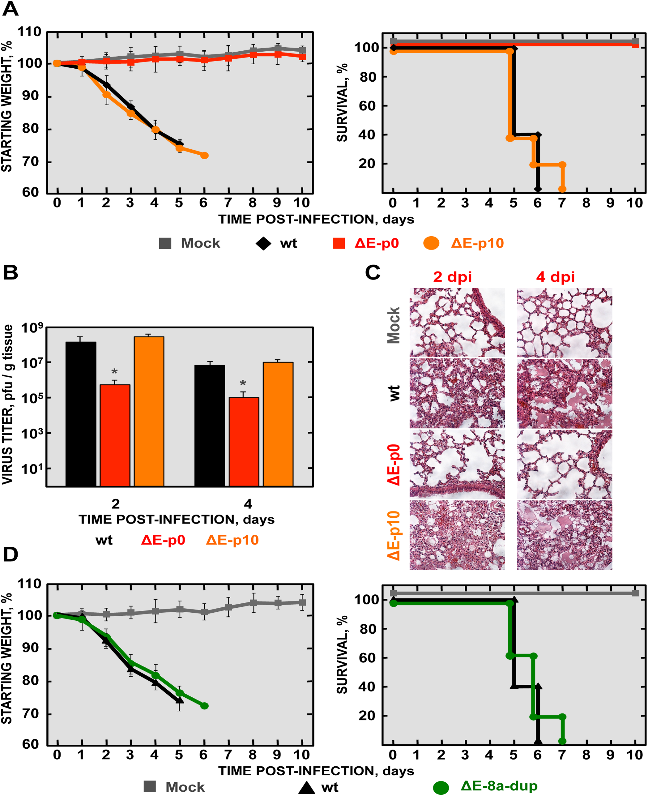 Virulence and viral growth of SARS-CoV-∆E after serial passage in mice.