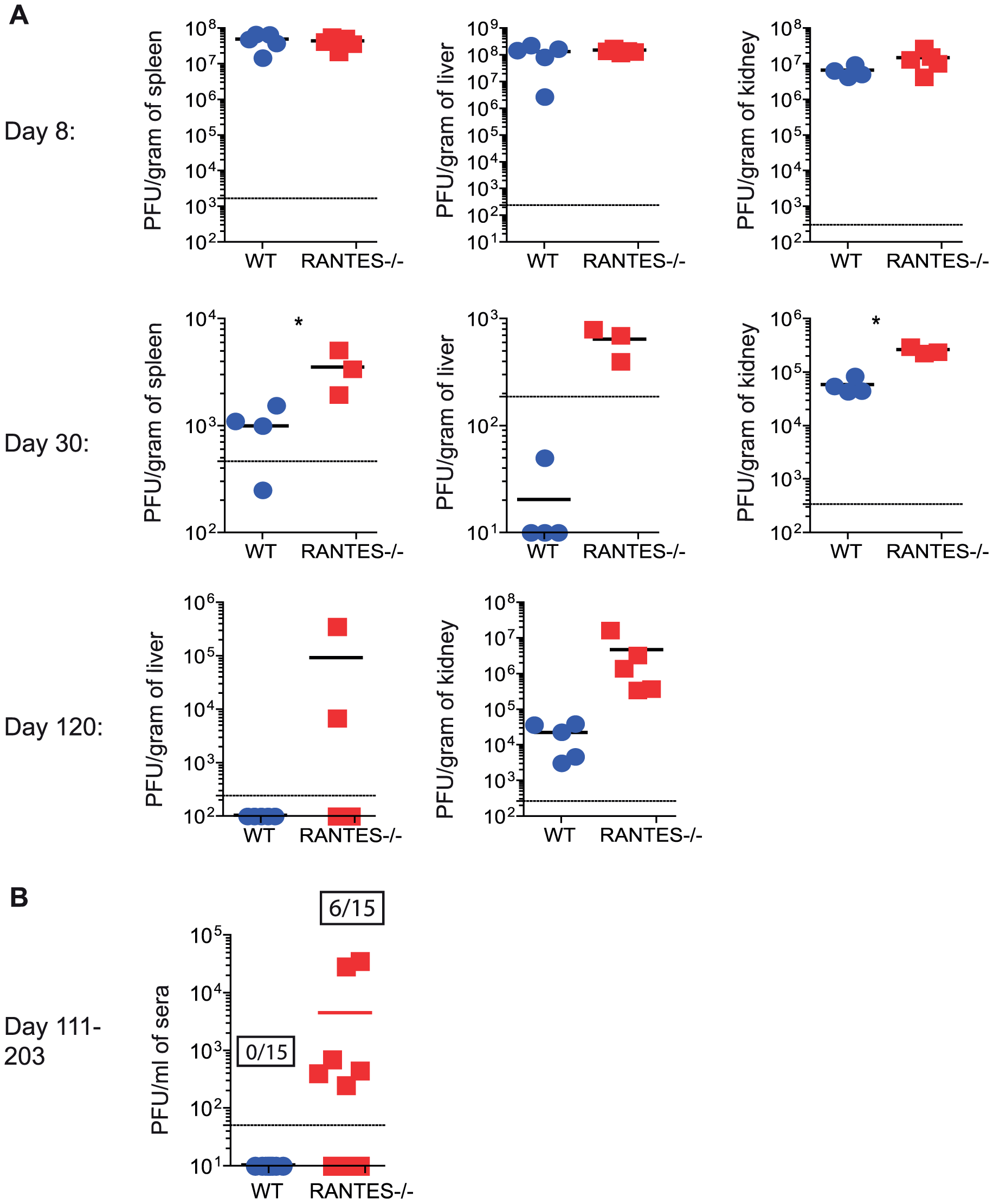 Higher viral loads later during chronic LCMV infection in RANTES<sup>−/−</sup> versus WT mice.
