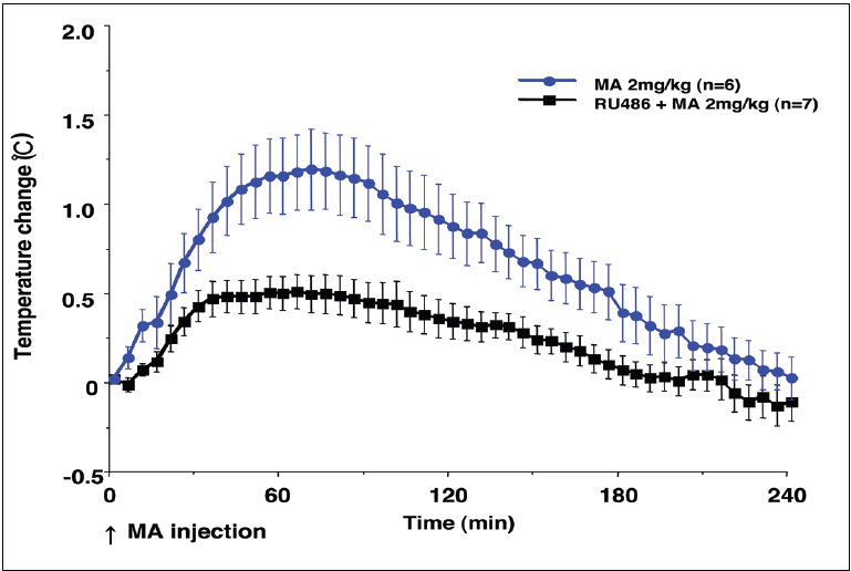 Figure 2. Time course of temperature changes in rats given methamphetamine (MA; 2 mg/kg) or RU-486 with MA (RU+MA). Values are mean ± SEM.
