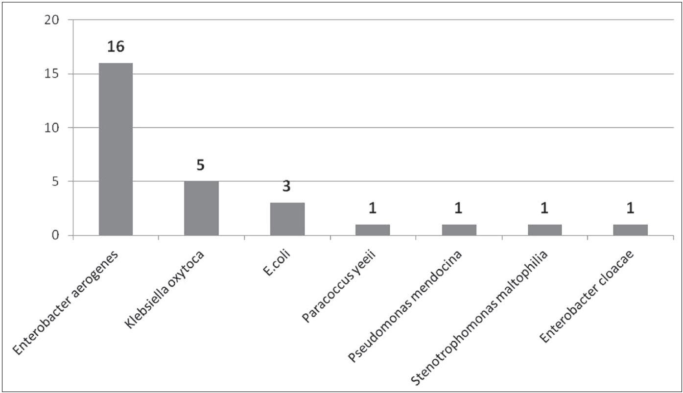 Počty izolovaných gramnegativních bakteriálních kmenů z ošetřujícího personálu Fig. 2. Counts of Gram-negative bacterial strains isolated from health care providers