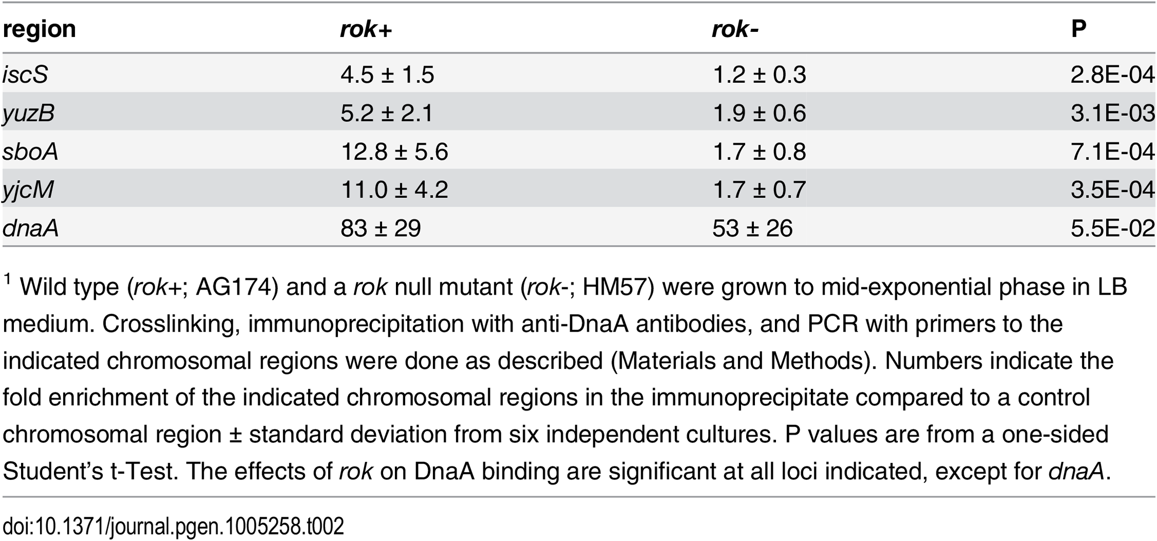 Effects of Rok on binding by DnaA in vivo<em class=&quot;ref&quot;><sup>1</sup></em>.