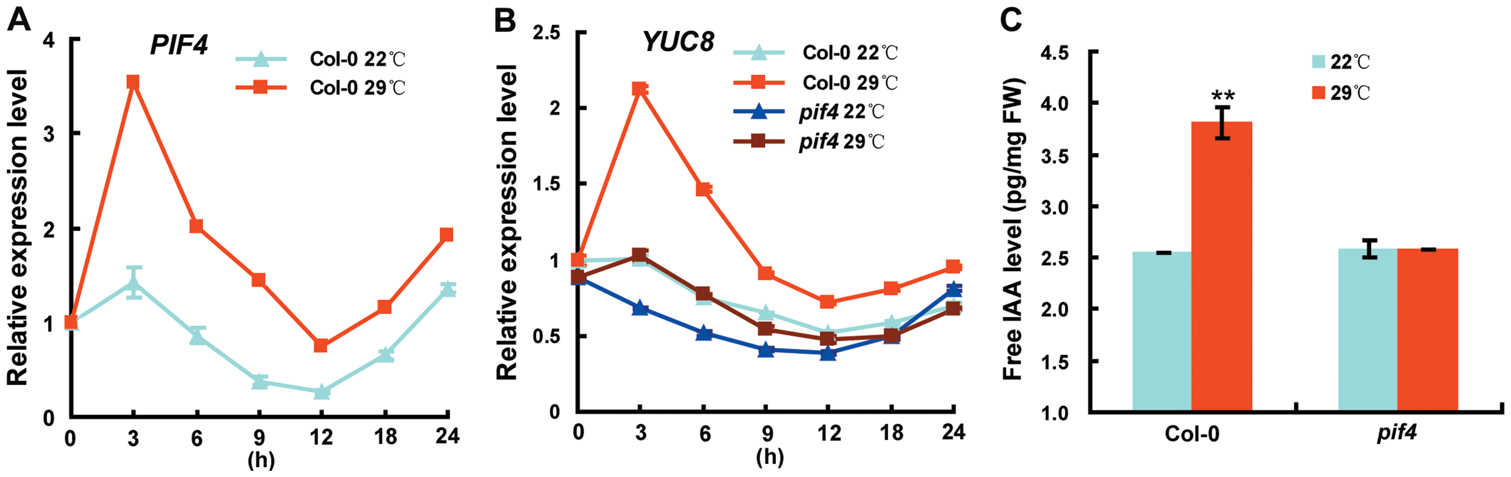 Loss of PIF4 Function Disrupts the High Temperature–Induced Elevation of <i>YUC8</i> Transcripts and Free IAA Levels.