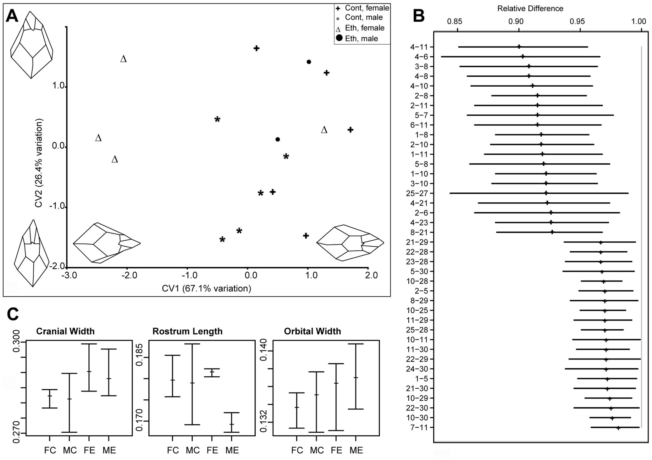 Quantitative analysis of the effects of gestational exposure to ethanol on skull shape.