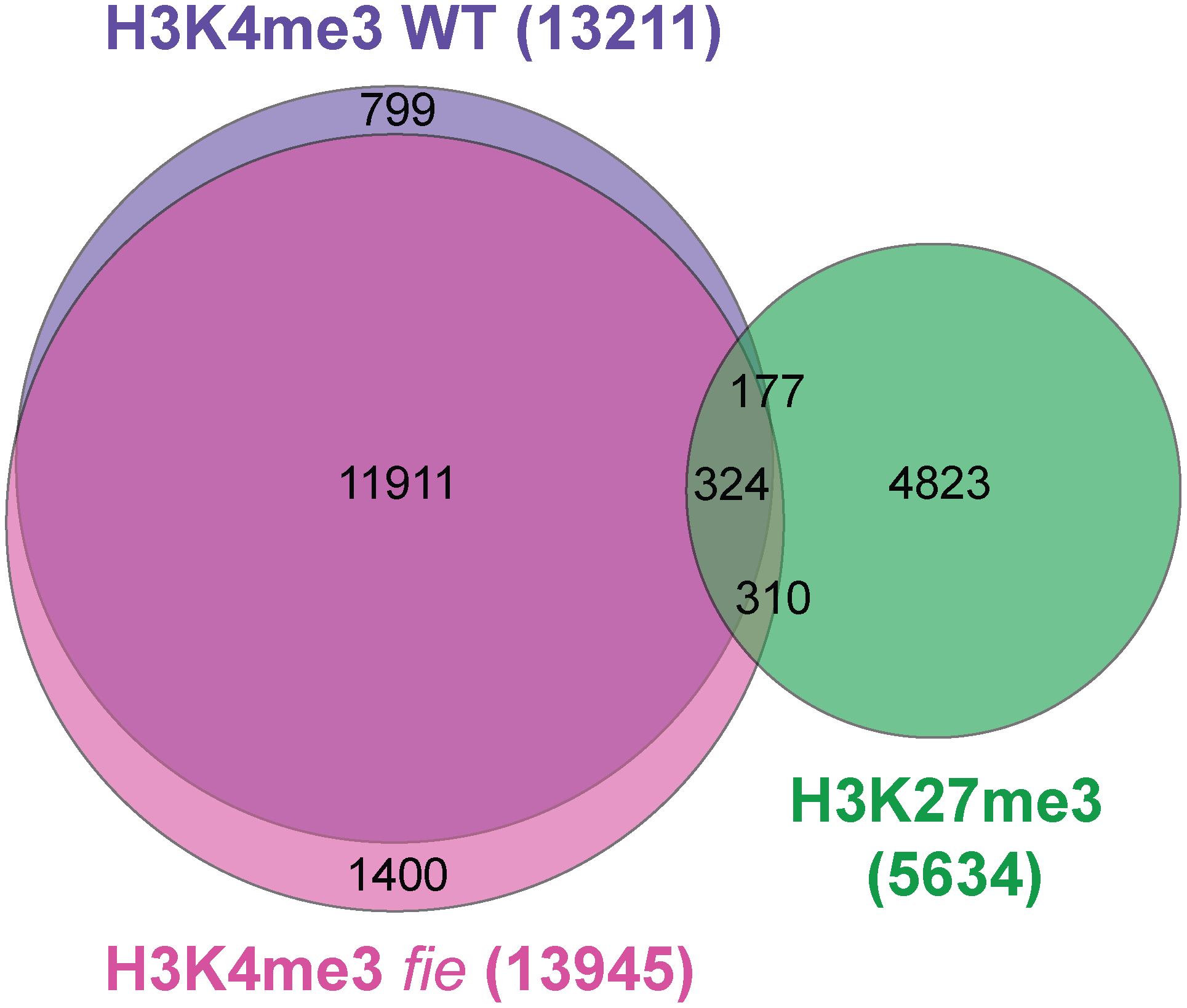 The set of H3K4 trimethylated genes changes only marginally between wild type and <i>fie</i> and is under-represented among H3K27me3 targets.
