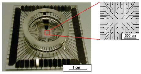 Fig. 1: MEA chip with glass ring (left) and its magnified microelectrode array (right). The microelectrode array consists of 59 microelectrodes. A larger reference electrode is located inside the glass ring area next to the microelectrode array.