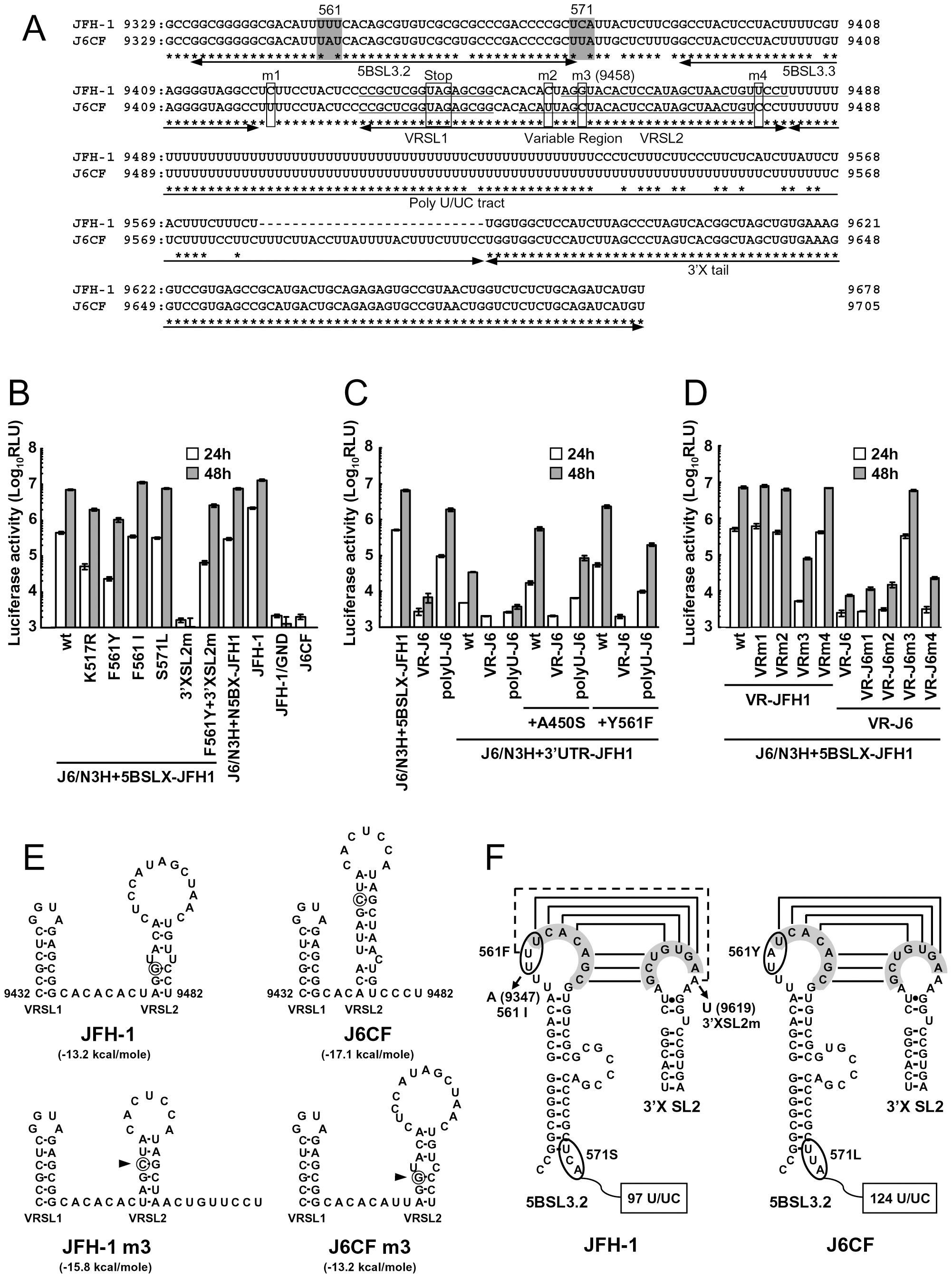 Replication activity of J6CF-based replicons containing variants or substitutions.