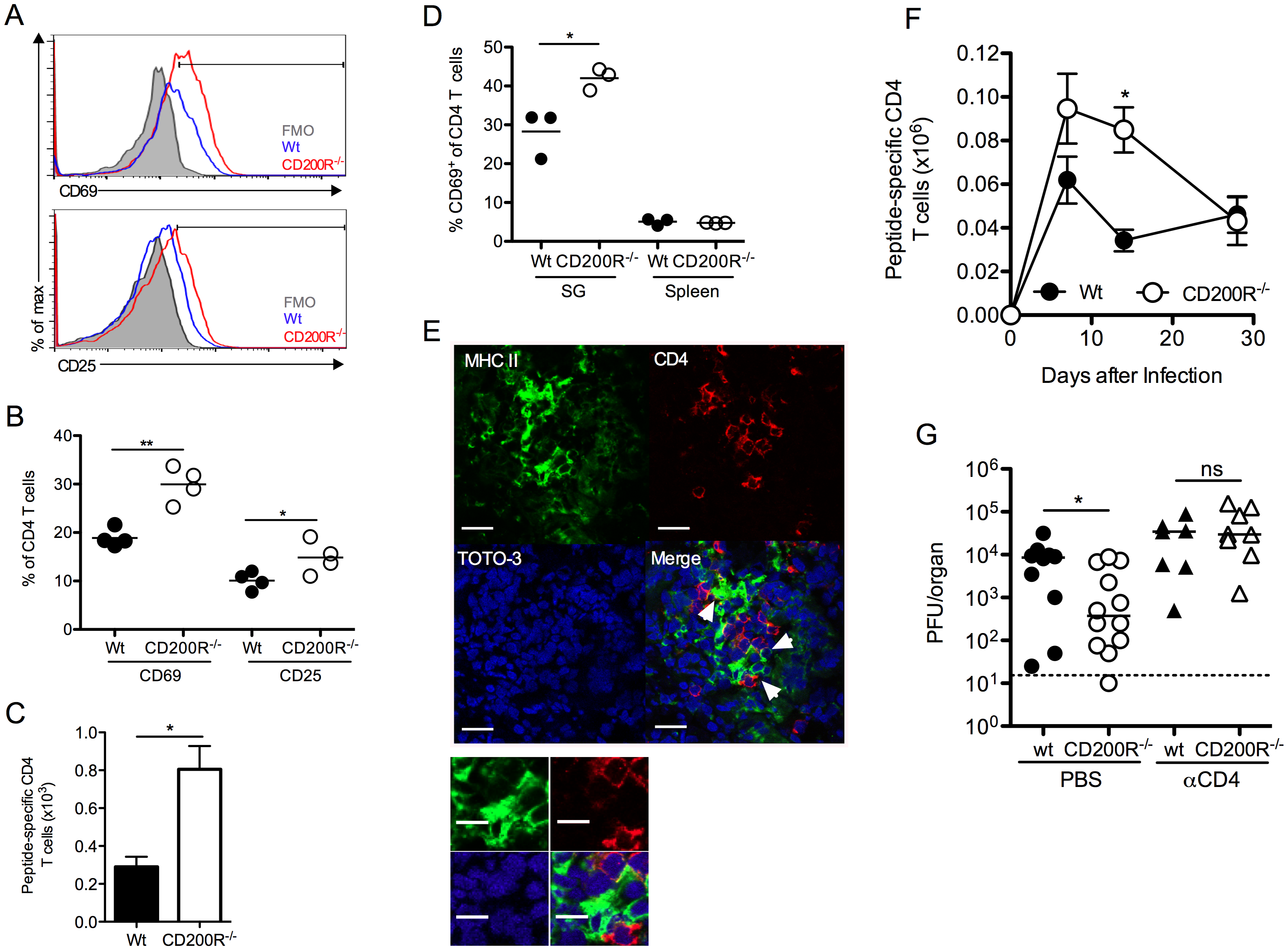 CD4 T cells limit virus persistence in CD200R<sup>-/-</sup> mice.