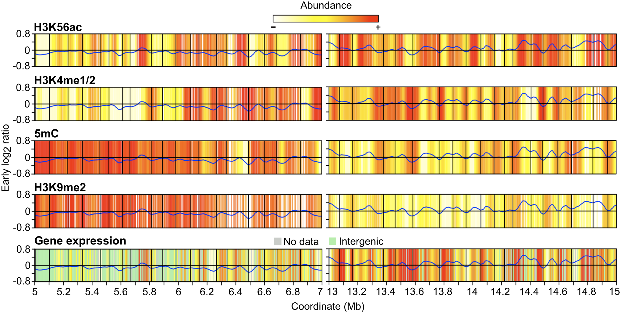Heat maps of epigenetic modifications and gene expression.