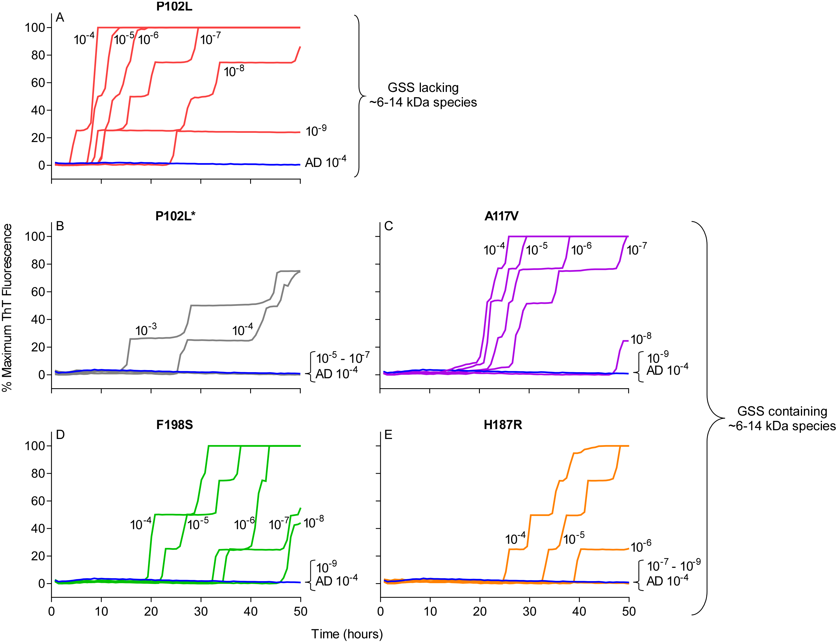 RT-QuIC sensitivity for detection of human GSS P102L, P102L*, A117V, F198S, and H187R seeding activity using BV rPrP<sup>Sen</sup>.