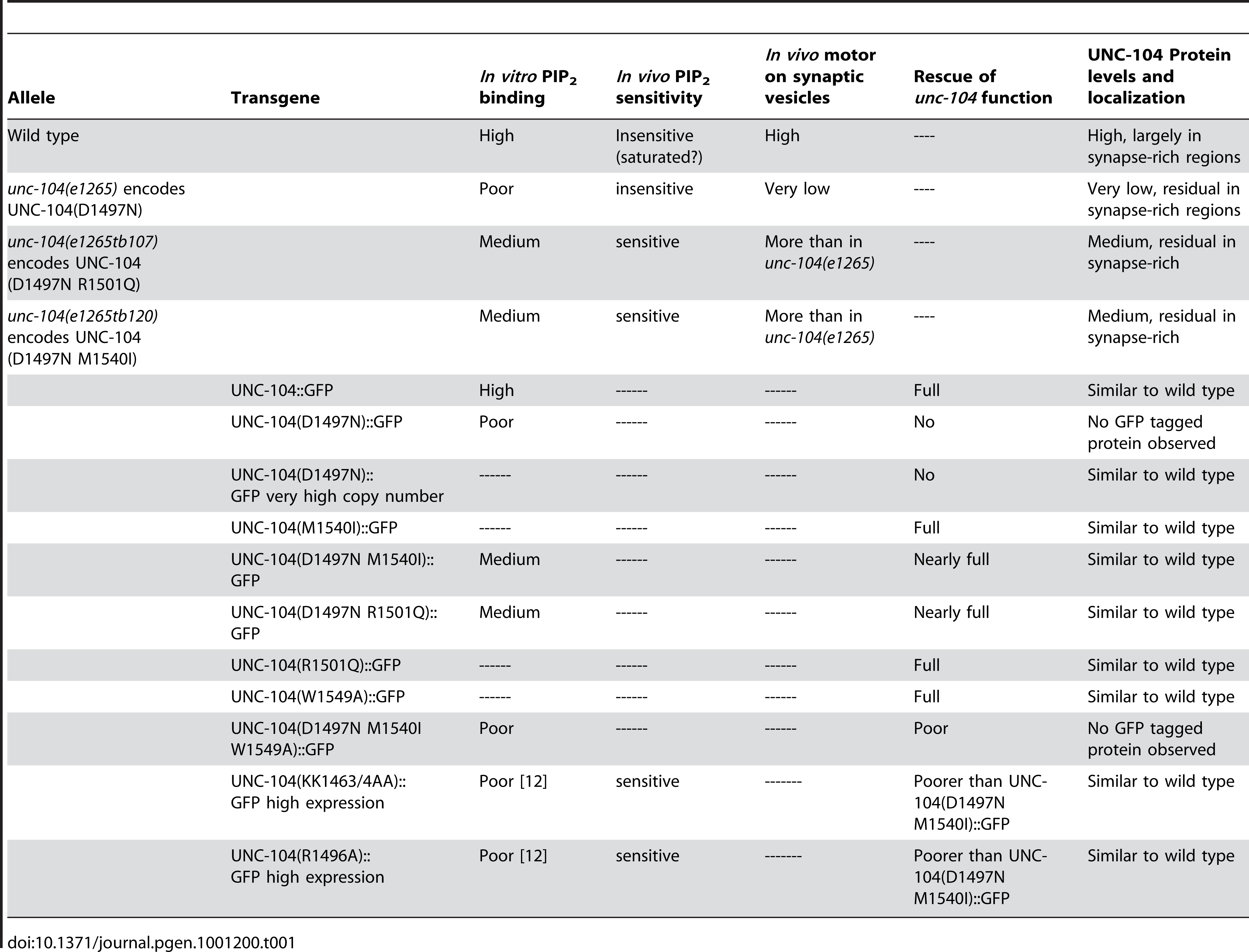 Summary of all UNC-104 alleles and transgenes and their behaviour in multiple assays.