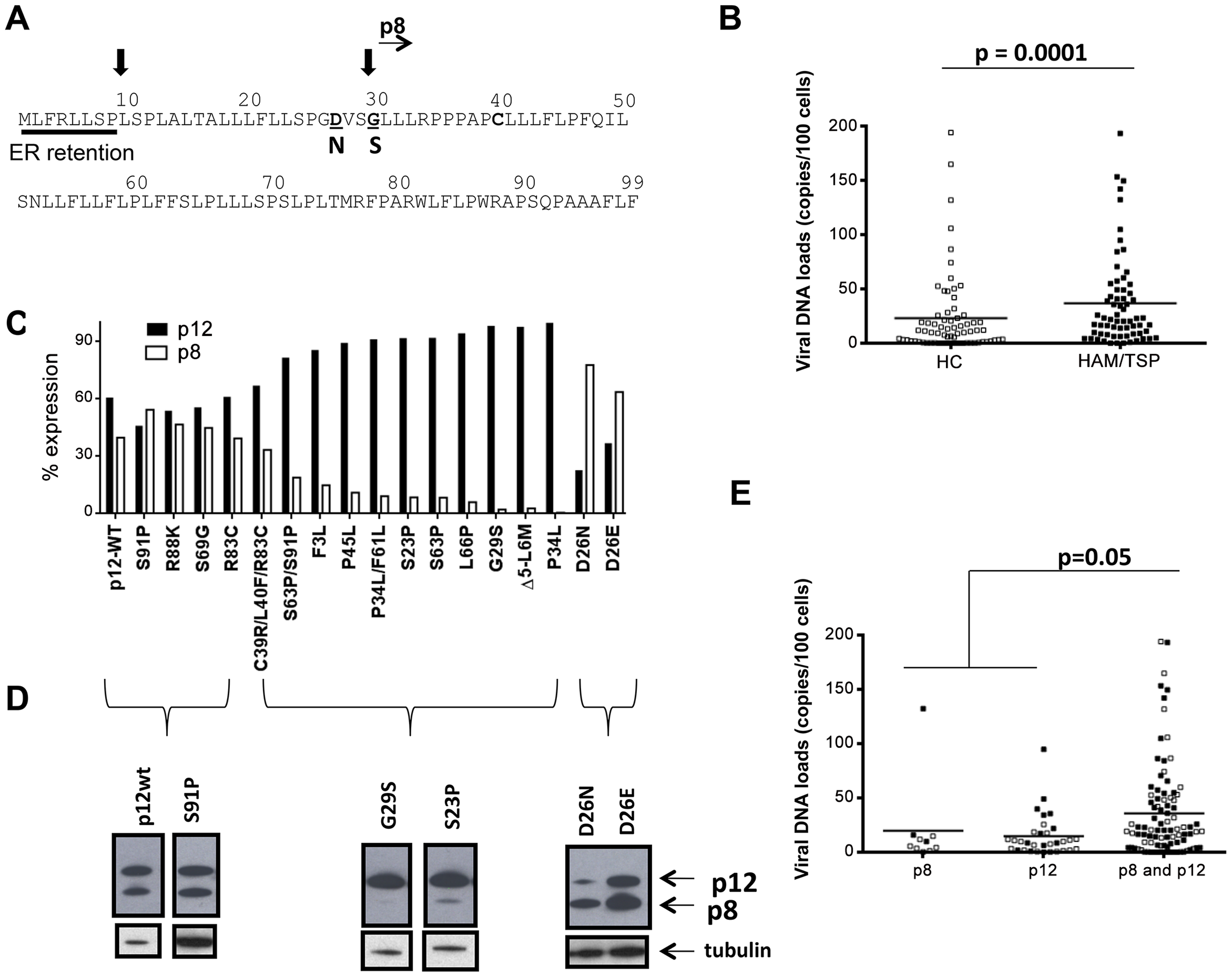 Analysis of <i>orf-I</i> from the PBMCs of HTLV-1 infected individuals.