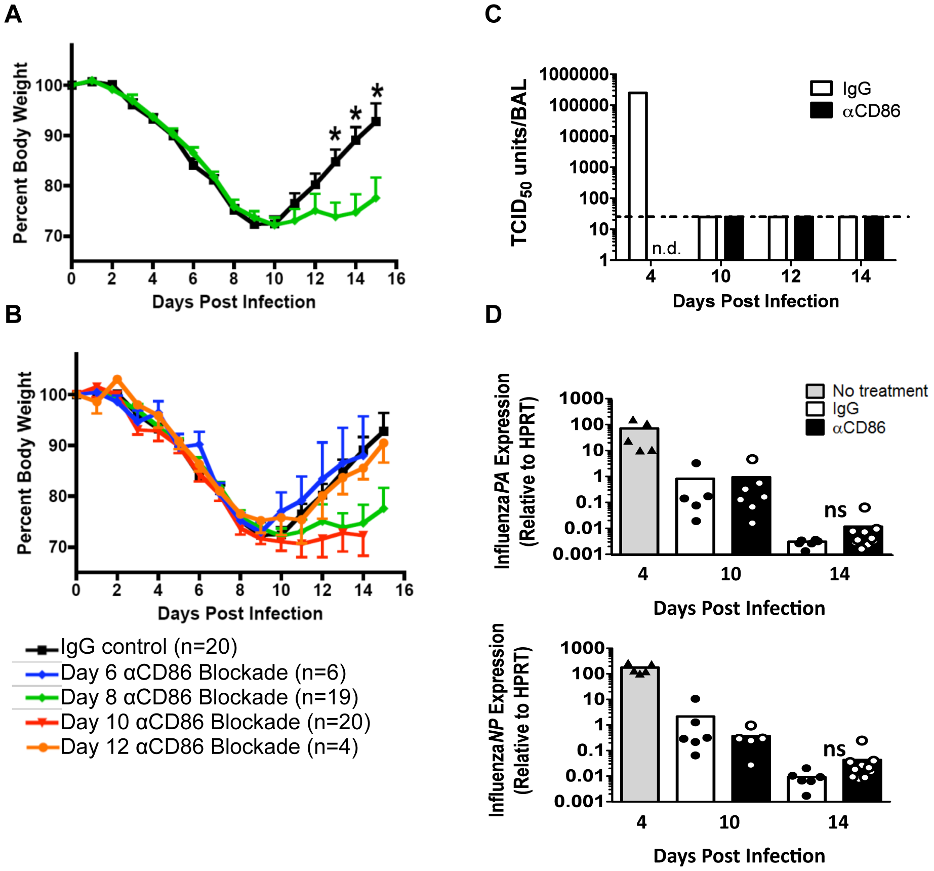 CD86 co-stimulation is required for optimal recovery following IAV infection.