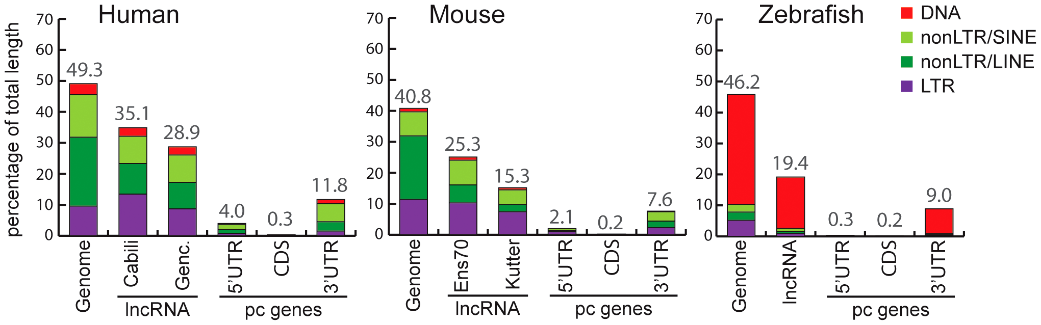 Coverage of different TE classes in genome, lncRNA, and protein-coding exons in human, mouse, and zebrafish.