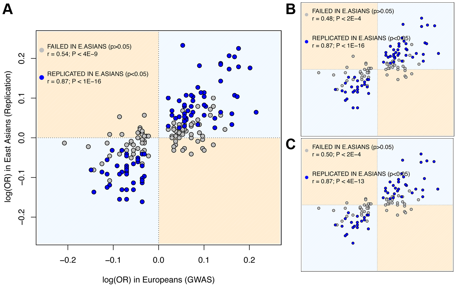 East Asian GWAS find the same risk allele and similar log(OR) than European discovery GWAS.