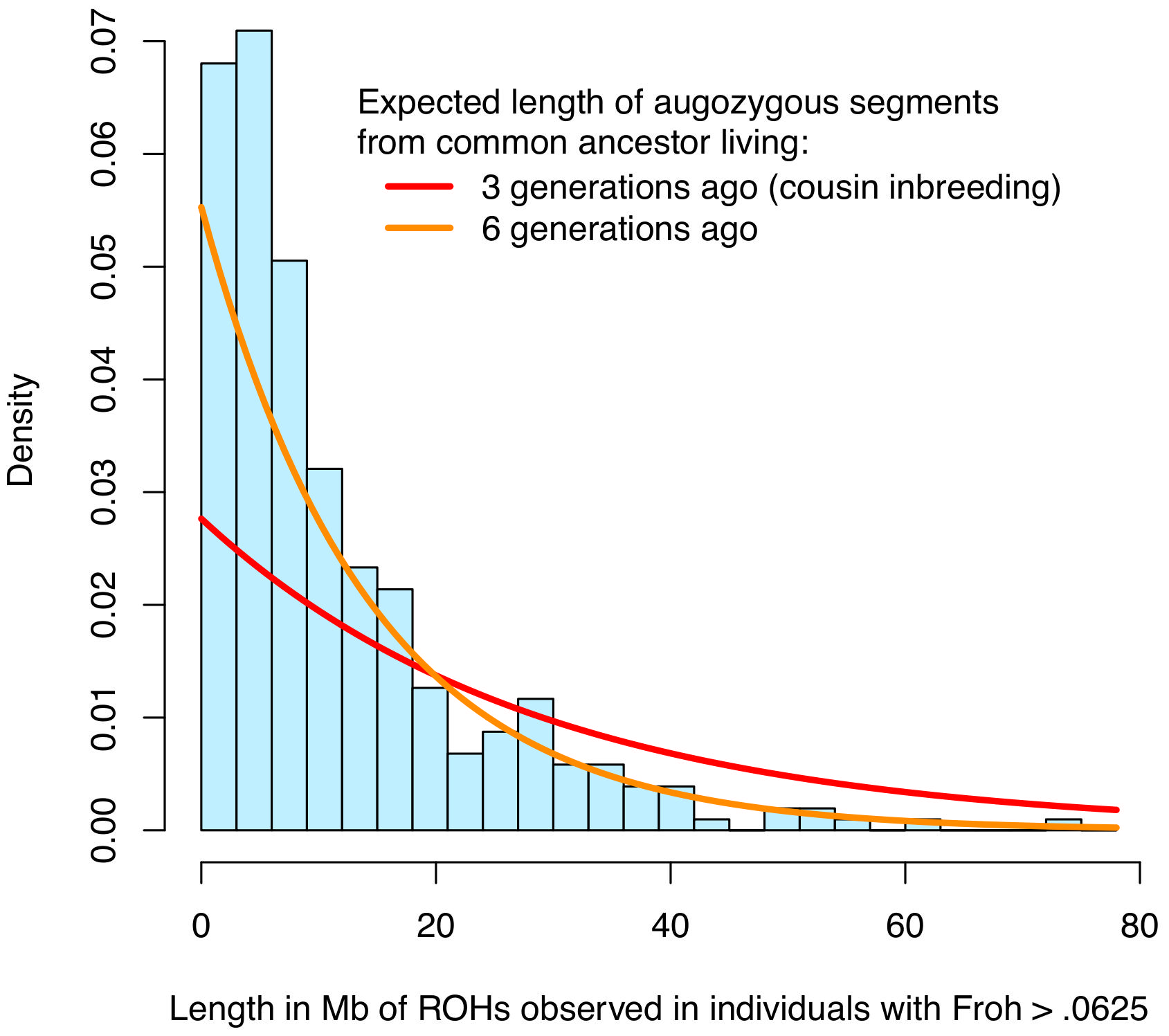 Distribution of ROH lengths for the 15 individuals with <i>Froh</i>>.0625 in the sample (blue) and the expected lengths of autozygous segments for different levels of inbreeding (red and orange).