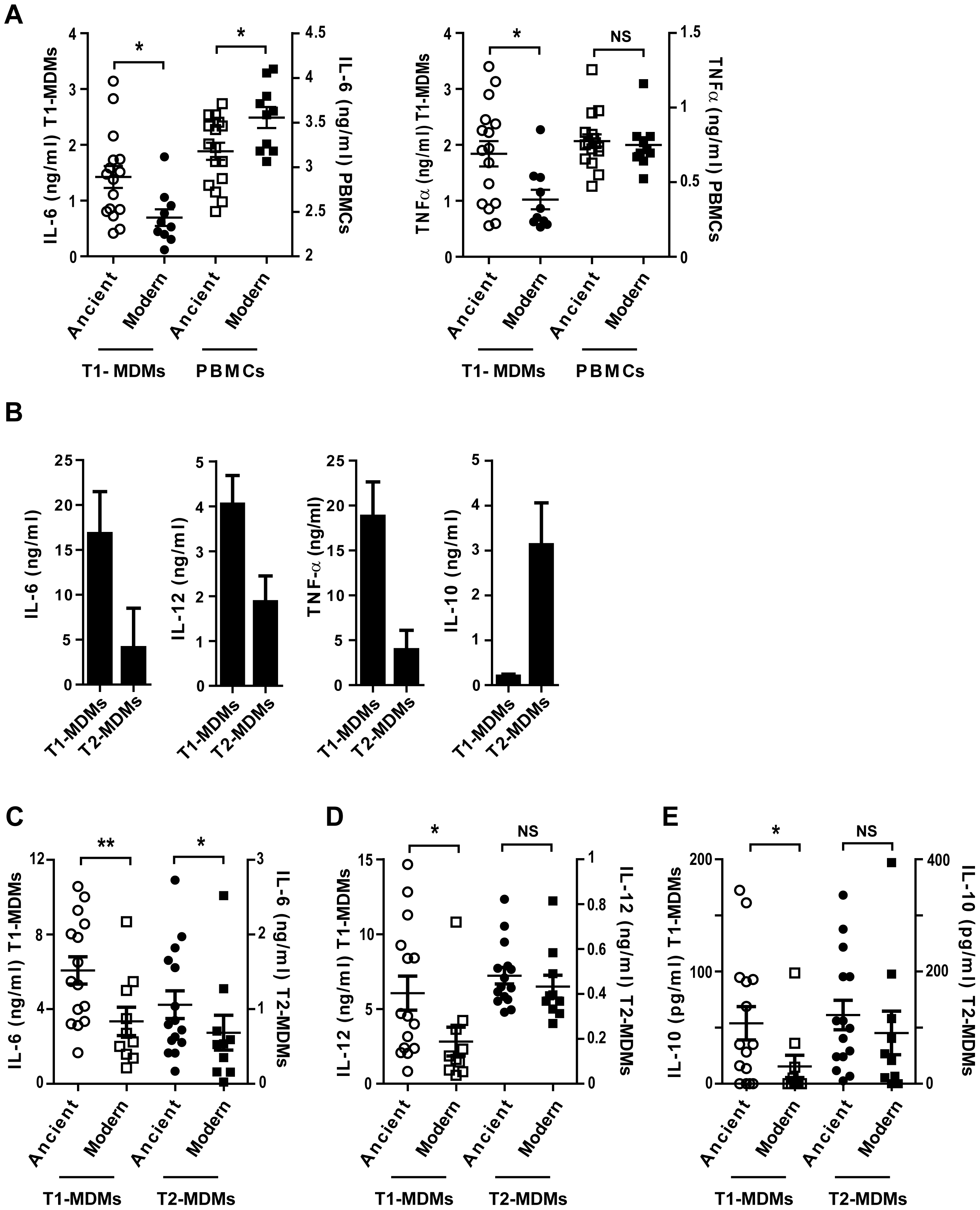 The inflammatory response to ancient and modern lineages differs when infecting autologous PBMCs or anti-inflammatory Type 2 macrophages.