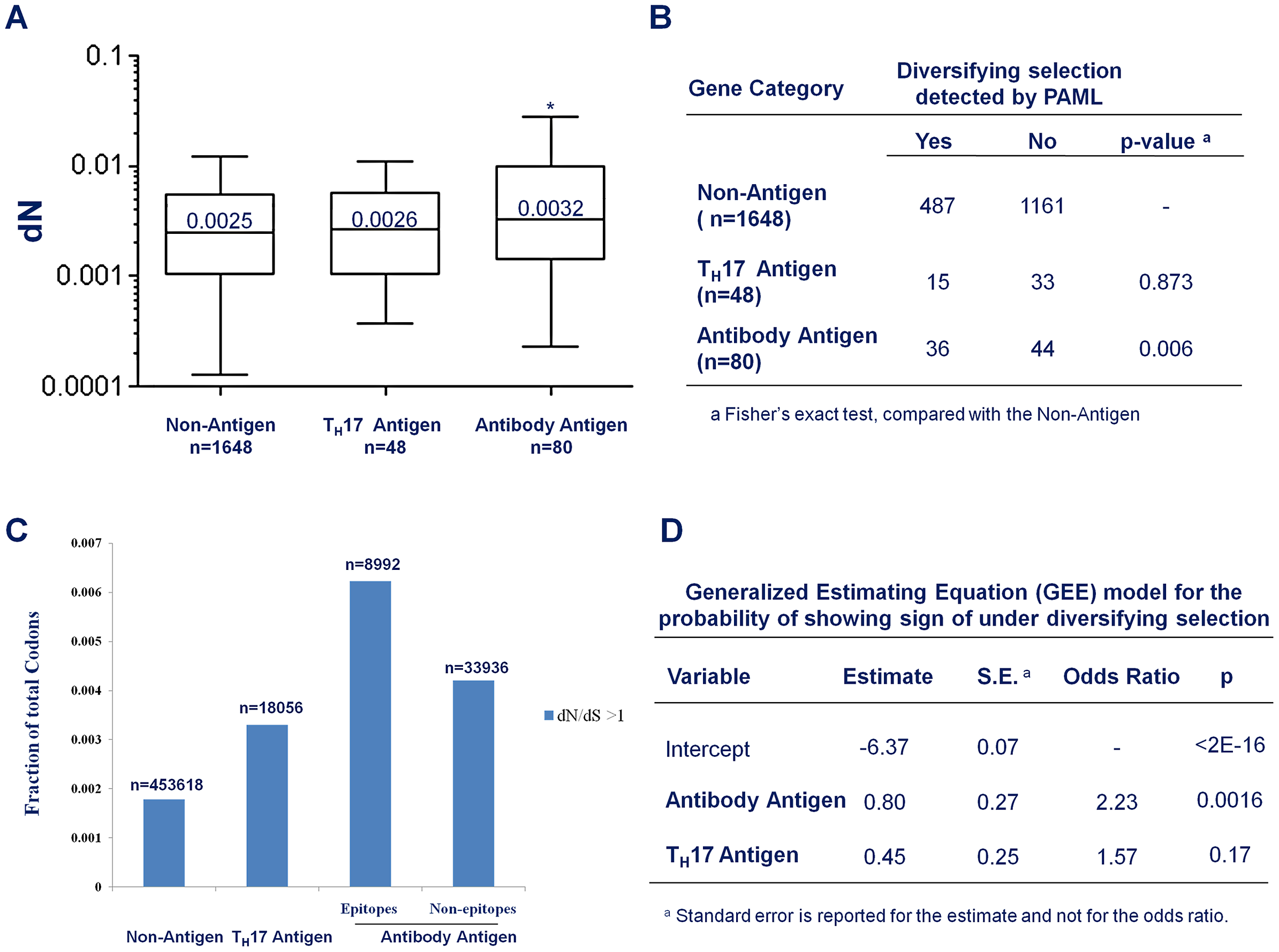 Antibody recognition is associated with stronger diversifying selection.