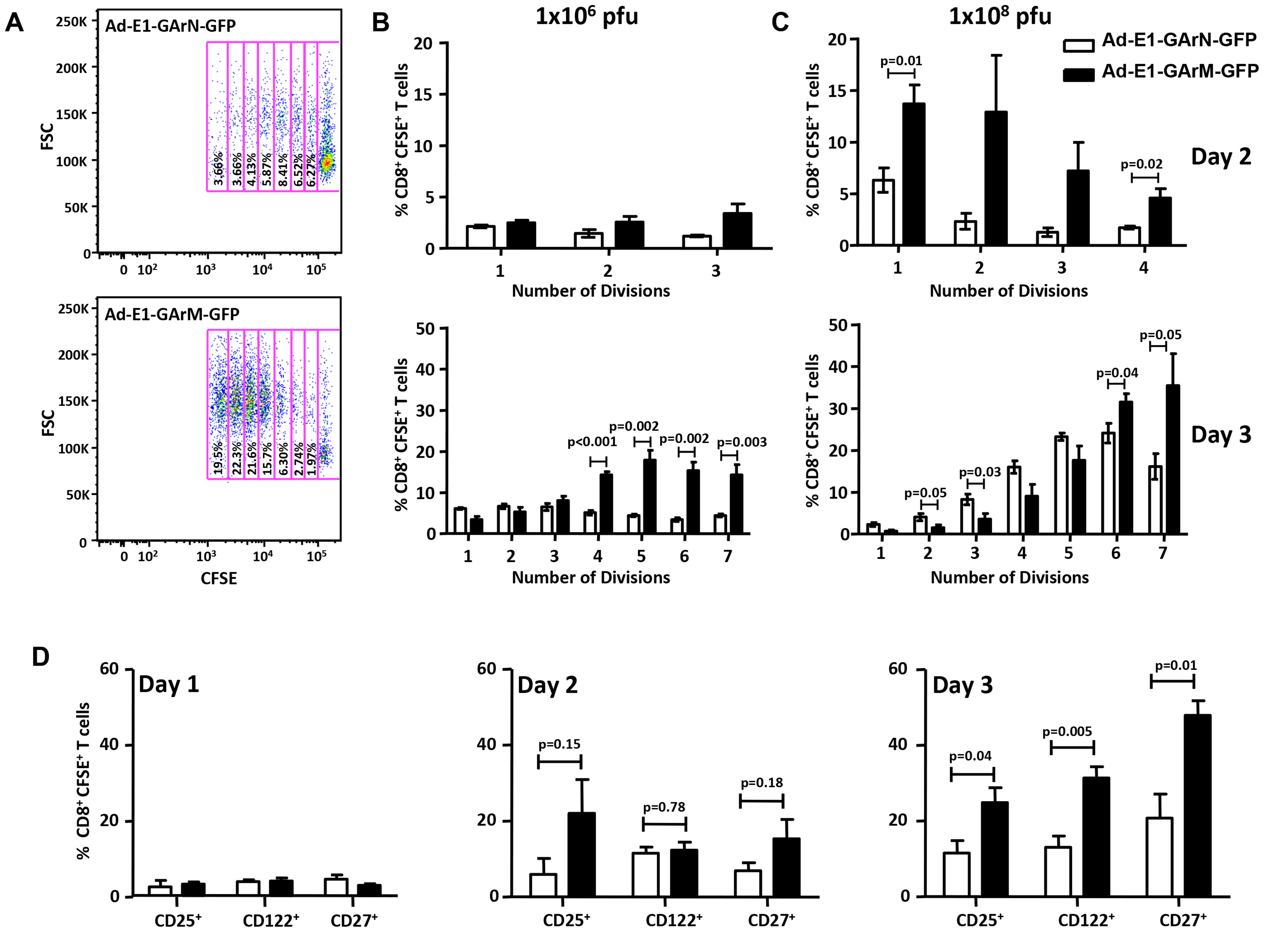 T cell proliferation and activation are influenced by differentially translated EBNA1 mRNAs.