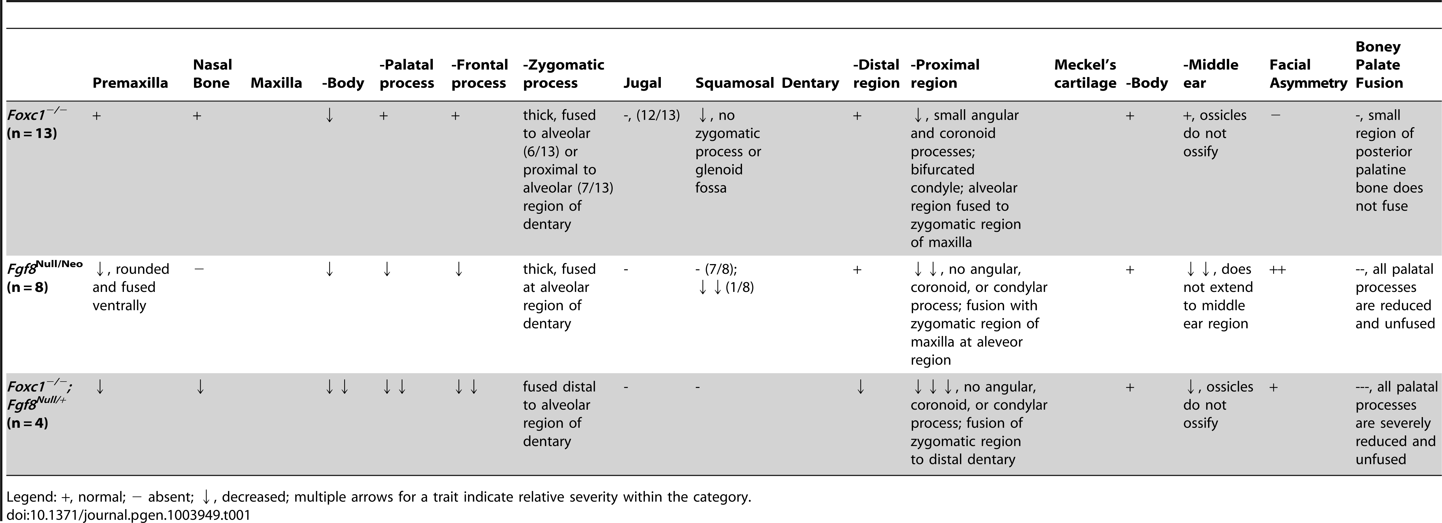 Summary of skeletal phenotypes in jaw related structures.