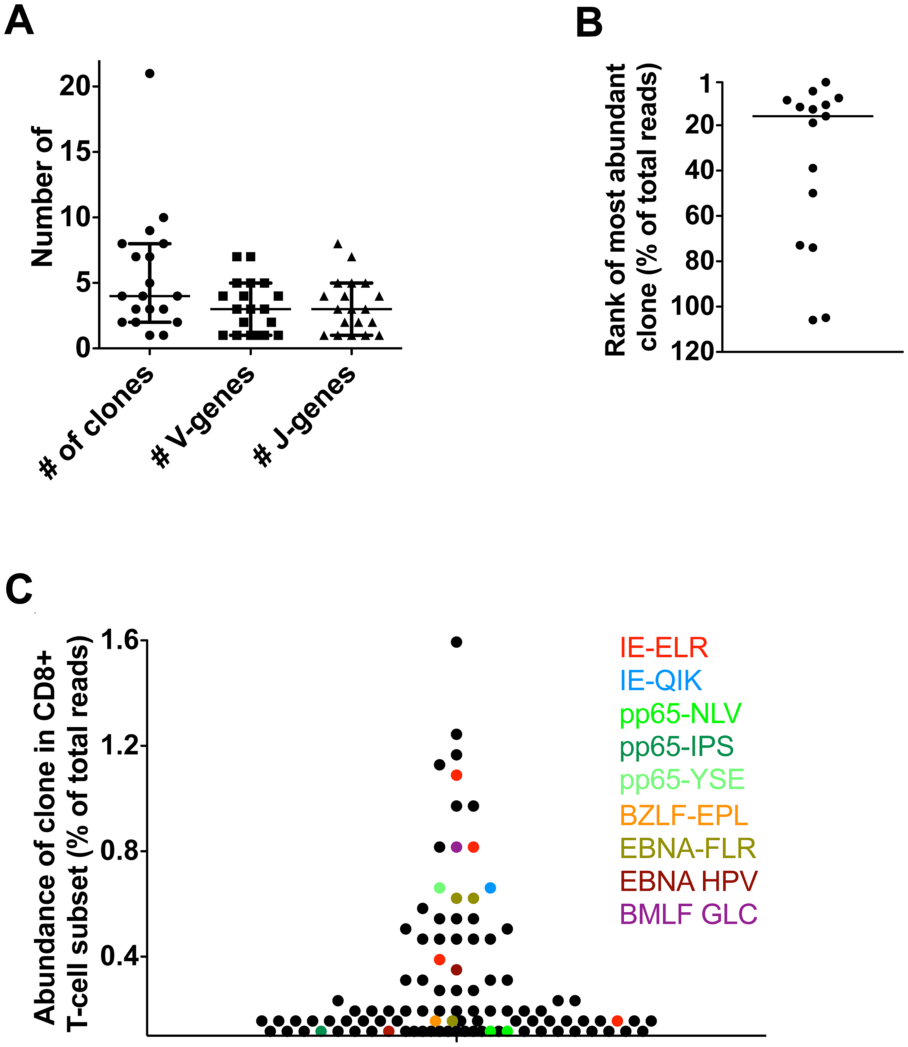 Latent phase anti-hCMV and EBV responses in healthy persons.