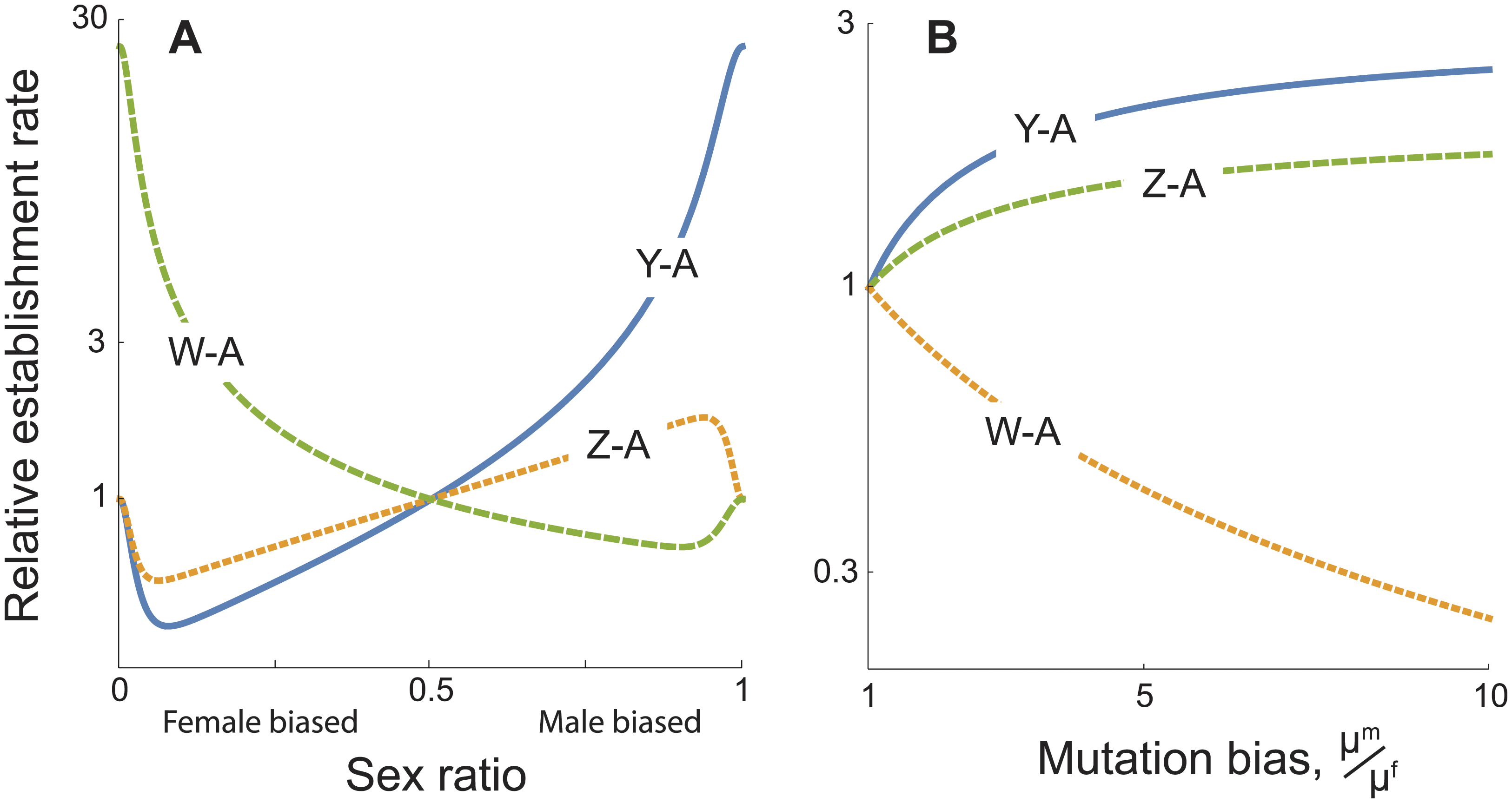 Establishment rates of sex chromosome-autosome fusions as a result of sexually antagonistic selection, relative to the rate for X-A fusions.