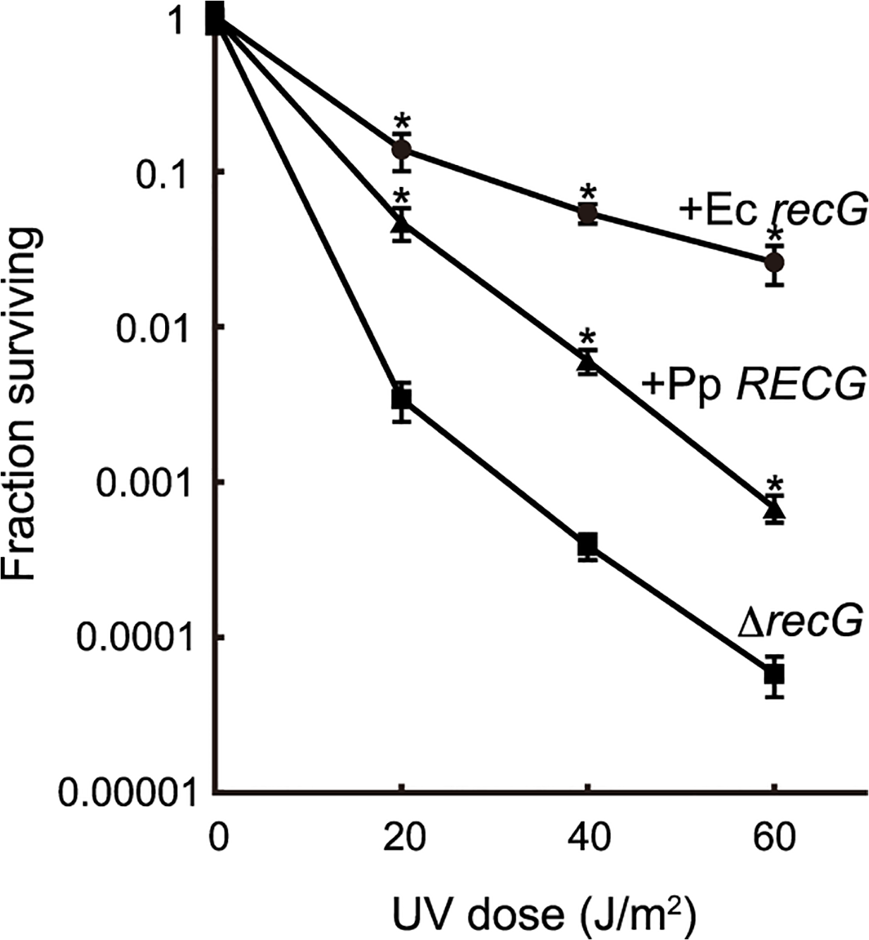 Complementation of the <i>E</i>. <i>coli recG</i> defect by <i>RECG</i>.