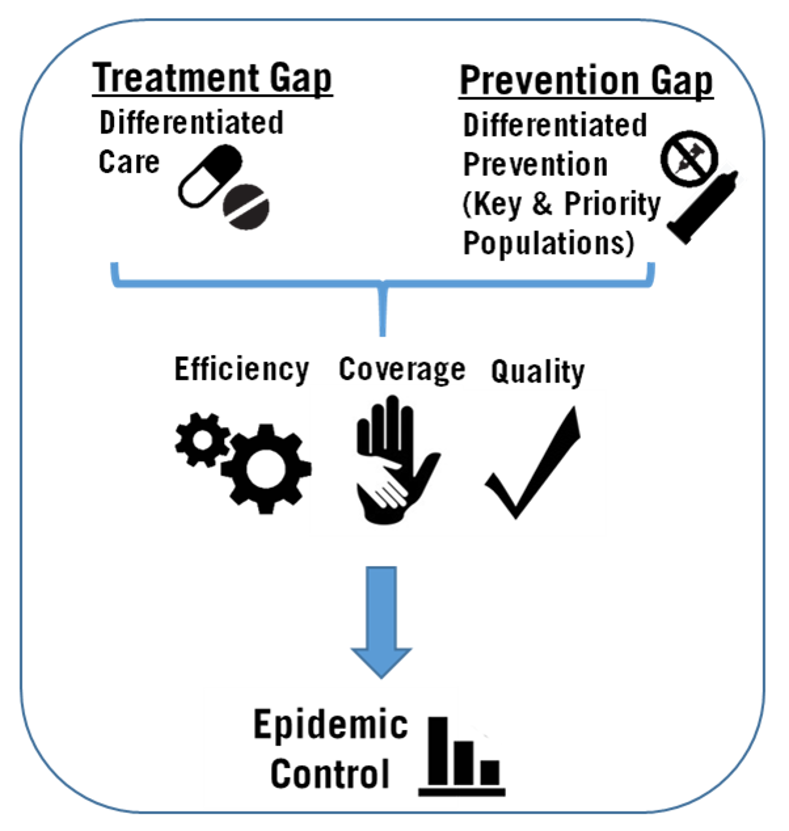 Framework for achievement of HIV epidemic control.