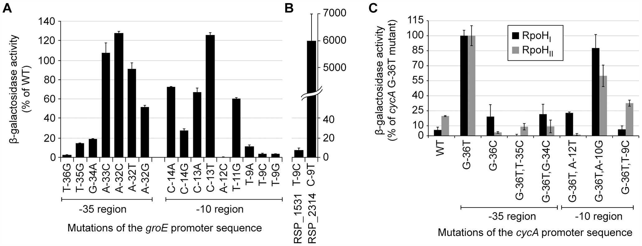 Activities of selected mutant promoters when transcribed by RpoH<sub>I</sub> or RpoH<sub>II</sub>.