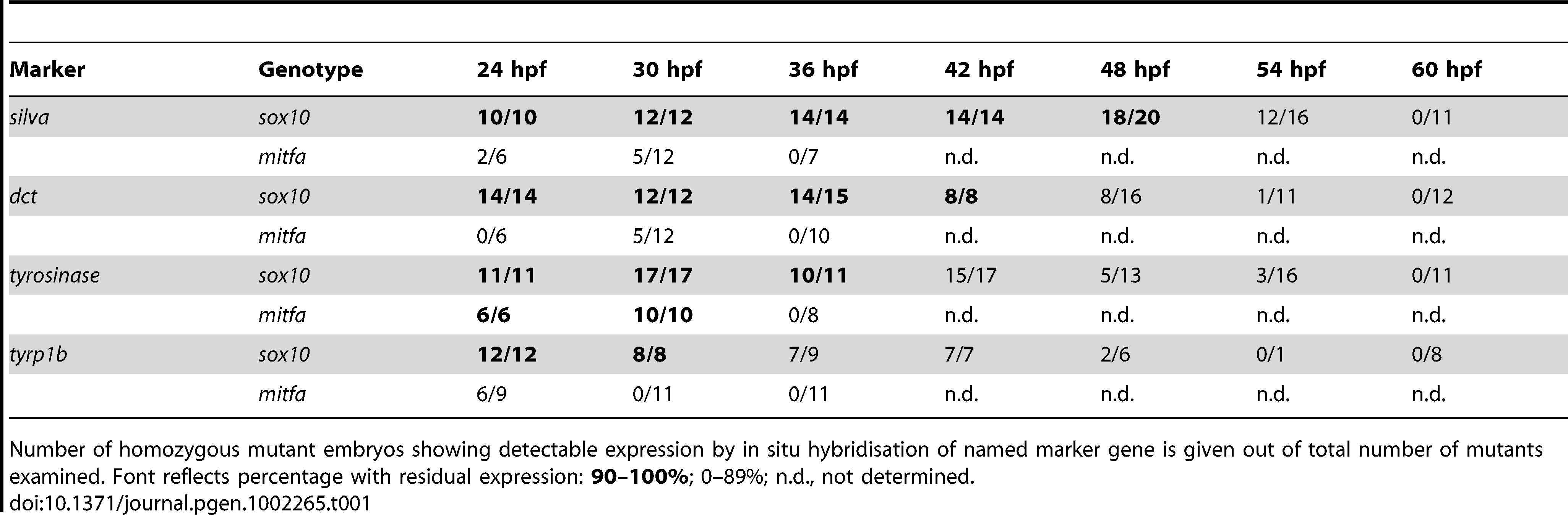 Quantitation of numbers of mutant embryos showing residual marker gene expression.