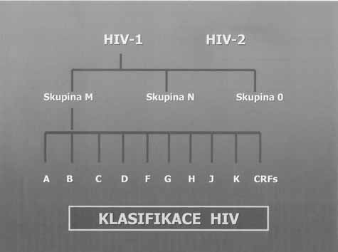 Subtypy HIV-1 a HIV-2 Fig. 2. Subtypes HIV-1 and HIV-2