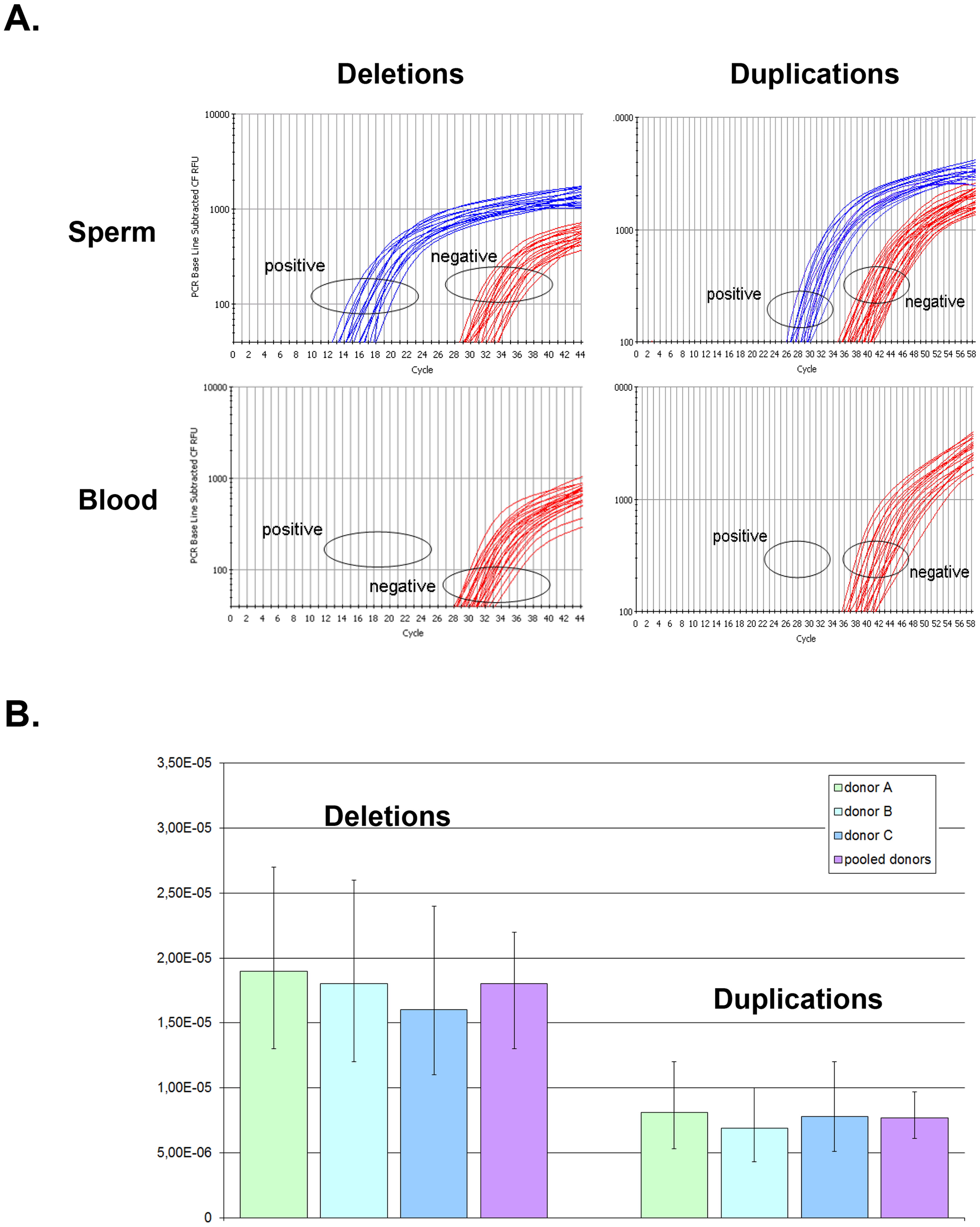 Rate of <i>de novo</i> deletion and duplication events occurring at the <i>DPY19L2</i> NAHR hotspot determined by digital PCR on sperm from 3 control donors.