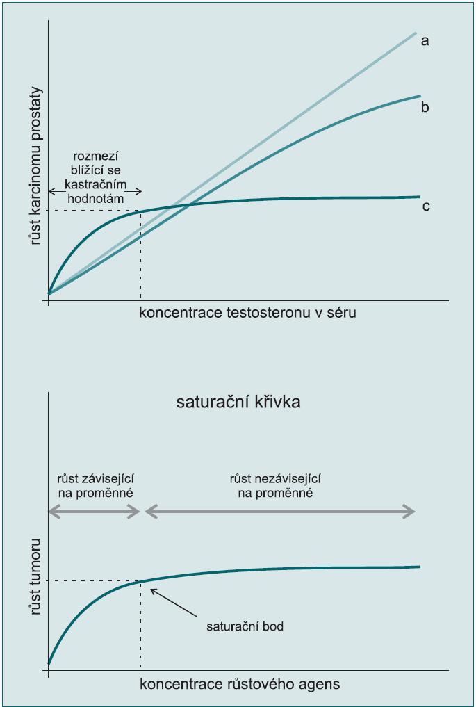 Schéma 1.  a) Tradiční model růstového charakteru karcinomu prostaty závislého na testo - steronu (T) spočívá v tom, že vyšší koncentrace T v séru povede k dalšímu růstu karcinomu prostaty (do určité míry) (křivky a, b). Saturační model (křivka c) popisuje strmou křivku závisející na T při koncentraci blížící se kastrační hladině (nebo pod ní), s plató zobrazujícím minimální nebo žádný růst karcinomu nad touto koncentrací.  b) Souvislost mezi testosteronem (T) a karcinomem prostaty odpovídá saturační křivce, kterou lze najít v mnoha biologických systémech, kde růst koresponduje s koncentrací hlavní živiny až do bodu maximální koncentrace této živiny. Tento typ křivky lze pozorovat u hormonů, které účinkují prostřednictvím vazby na specifické receptory, které mají konečný počet vazebných míst. Jakmile jsou všechny vazby obsazeny (je dosaženo saturace), další zvýšení koncentrace hormonů (nebo jiných živin) nevede k dalšímu růstu.  Schémata přetištěna se svolením.