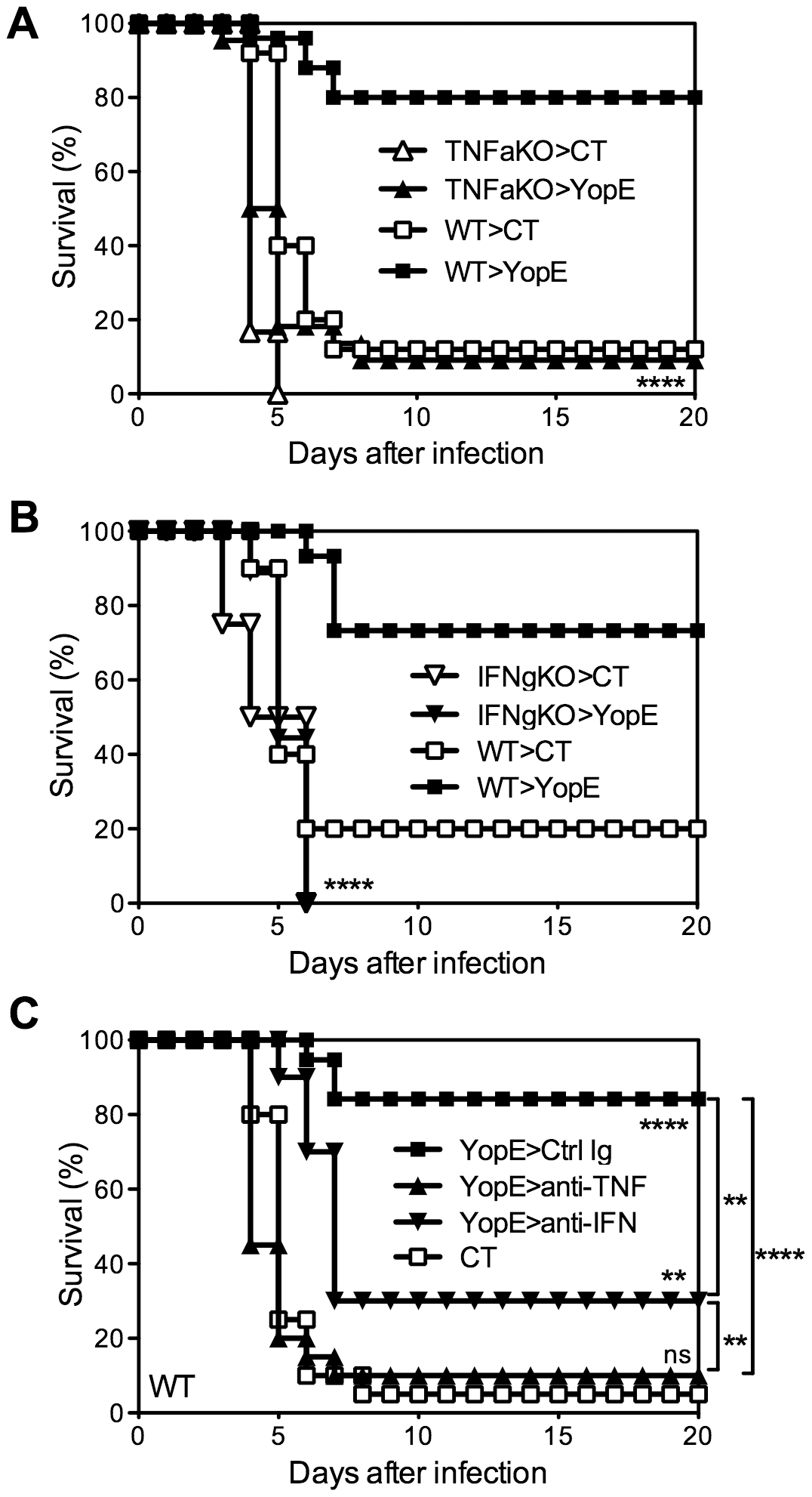 TNFα and IFNγ are critical for T cell-mediated protection against <i>Y. pestis</i>.