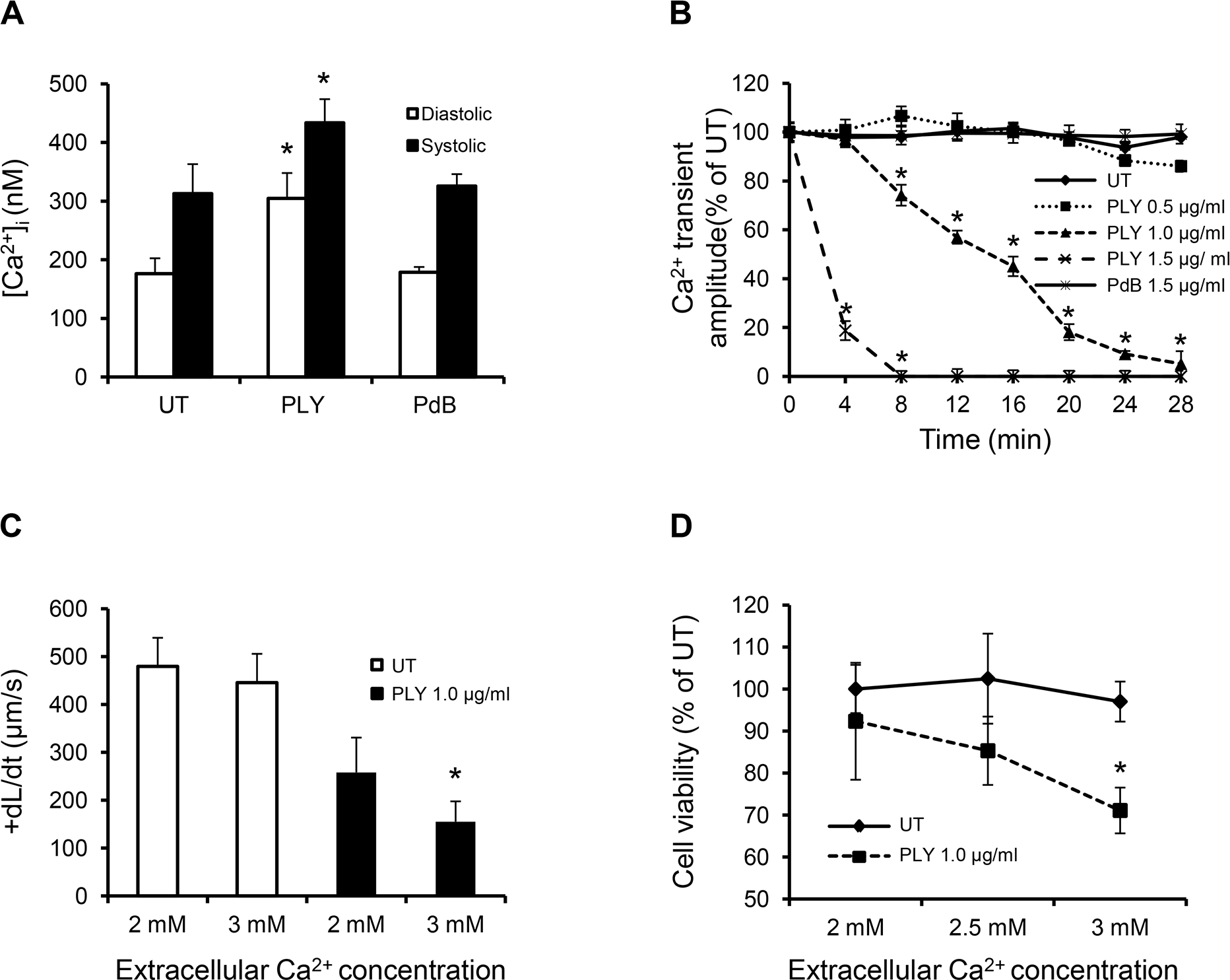 Profound calcium influx induces cardiomyocyte dysfunction and injury in response to sub-lytic PLY.