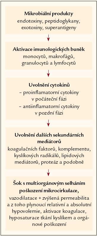 Schematické znázornění přechodu systémové zánětlivé reakce v sepsi.