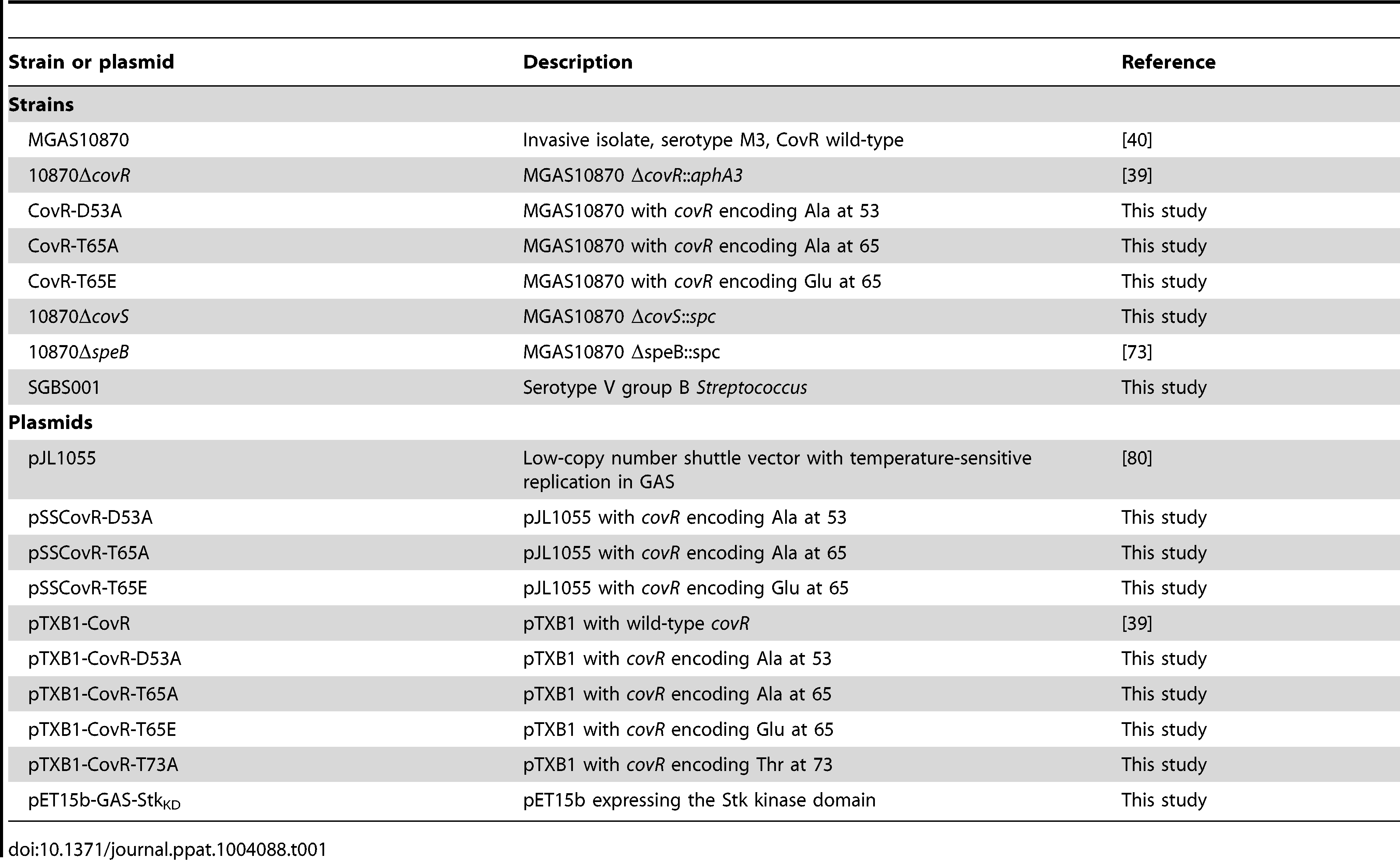 Strains and plasmids used in this work.
