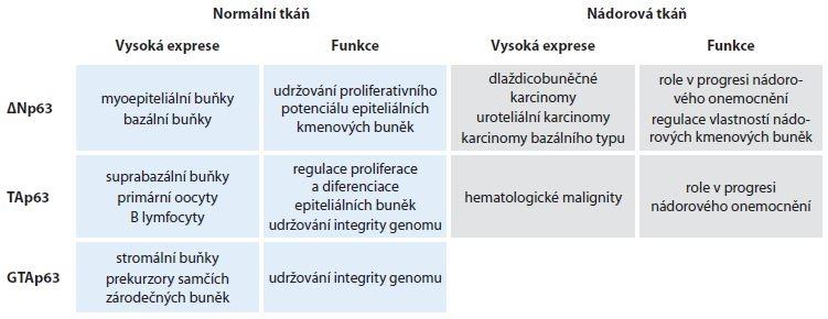 Exprese a funkce jednotlivých N-koncových variant p63 u normální a nádorové tkáně.
