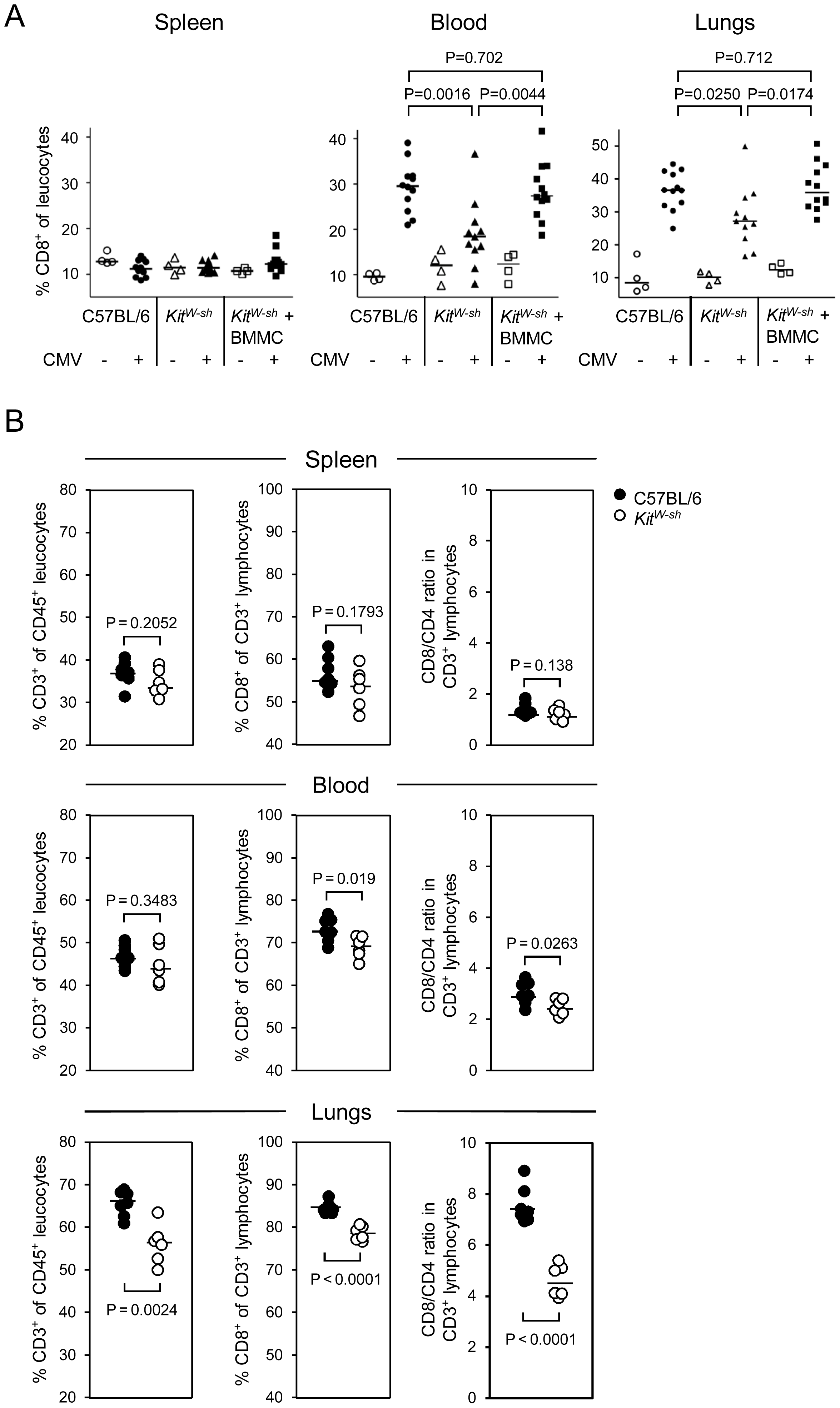 MC deficiency preferentially attenuates the recruitment of CD8 T cells to the lungs and is reversed by MC reconstitution.