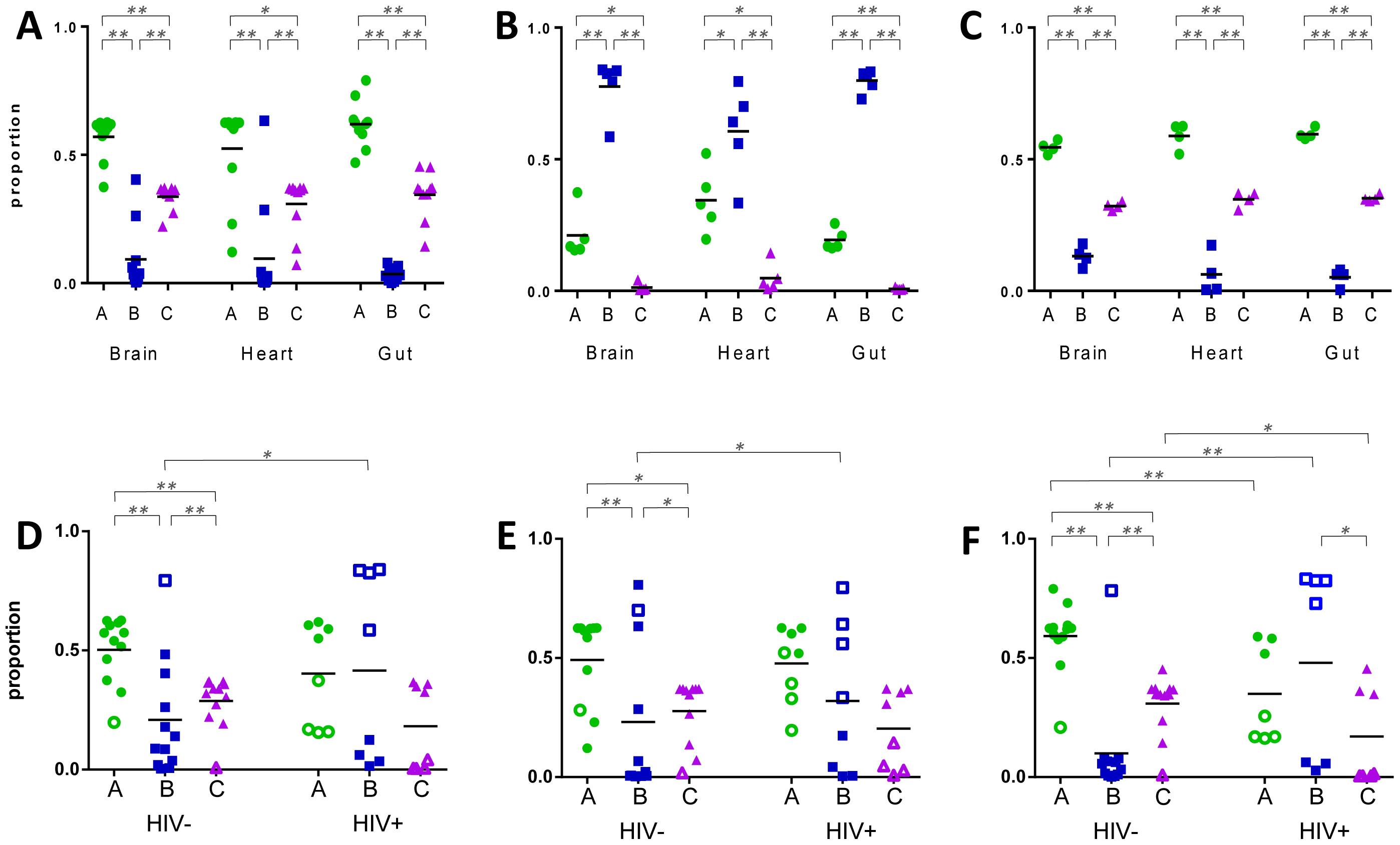 Expression of <i>var</i> gene groups in the organs of paediatric hosts.