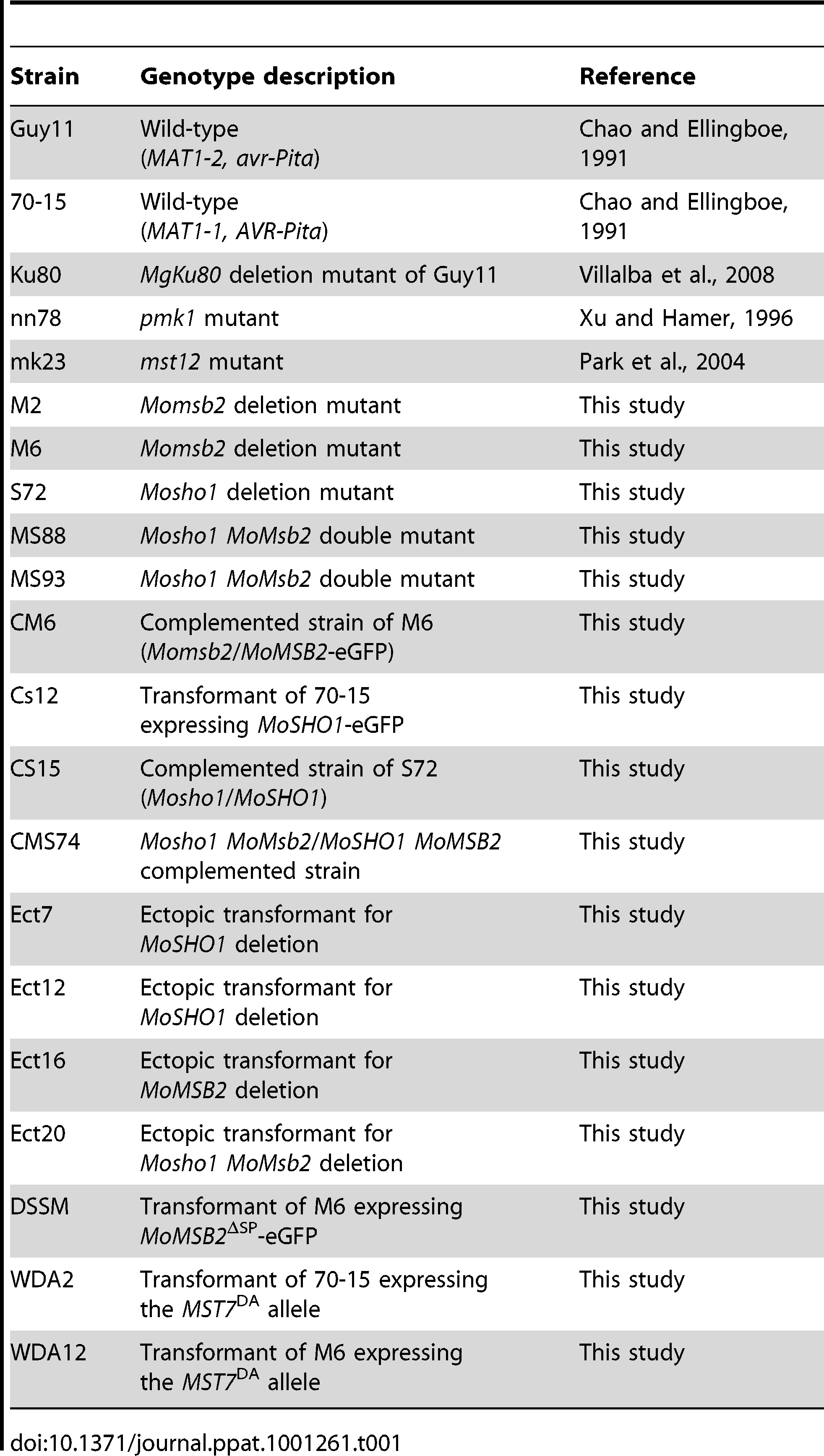 Wild-type and mutant strains of <i>Magnaporthe oryzae</i> used in this study.