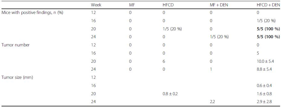 Summary of computed tomography findings, rate of positive findings, tumor number, and tumor size from 12 to 24 weeks