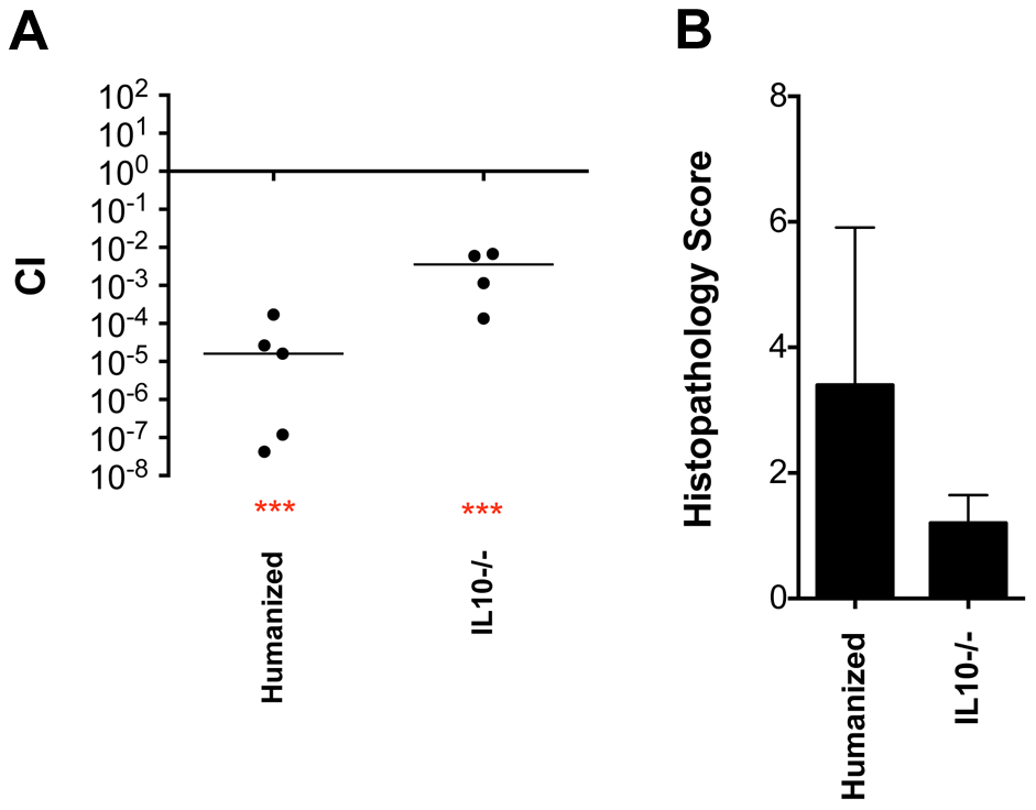 """Phenotype of a <i>fraB1</i>::kan mutant in the cecum of """"humanized"""" and IL10 knockout mice."""